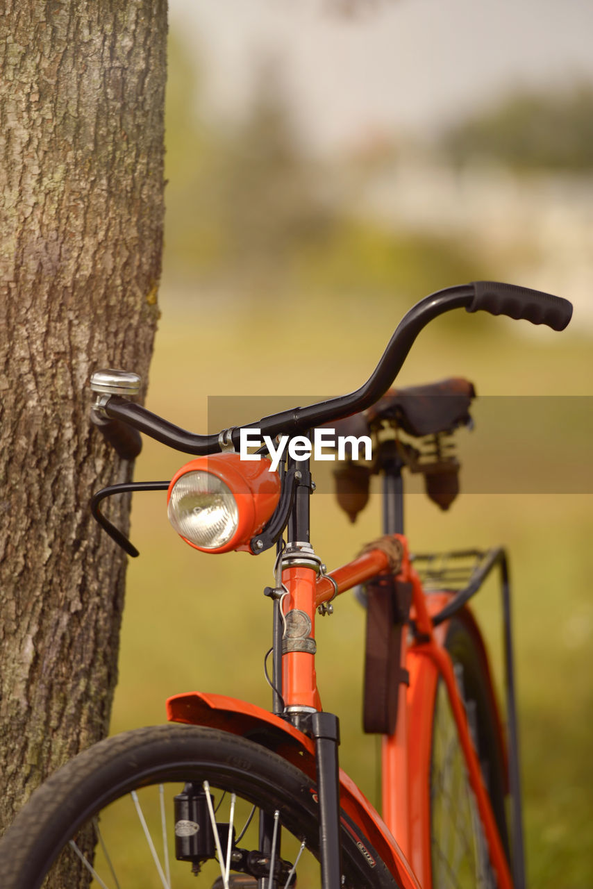 Close-Up Of Bicycle Parked By Tree In Park