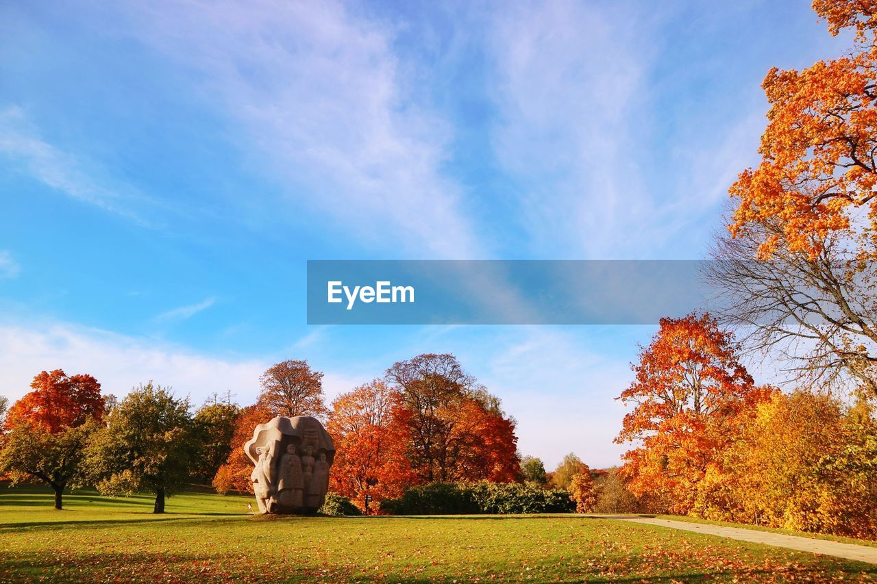 autumn, tree, change, sky, plant, orange color, beauty in nature, nature, cloud - sky, day, grass, outdoors, real people, leisure activity, tranquility, field, green color, leaf, lifestyles, scenics - nature, autumn collection, fall