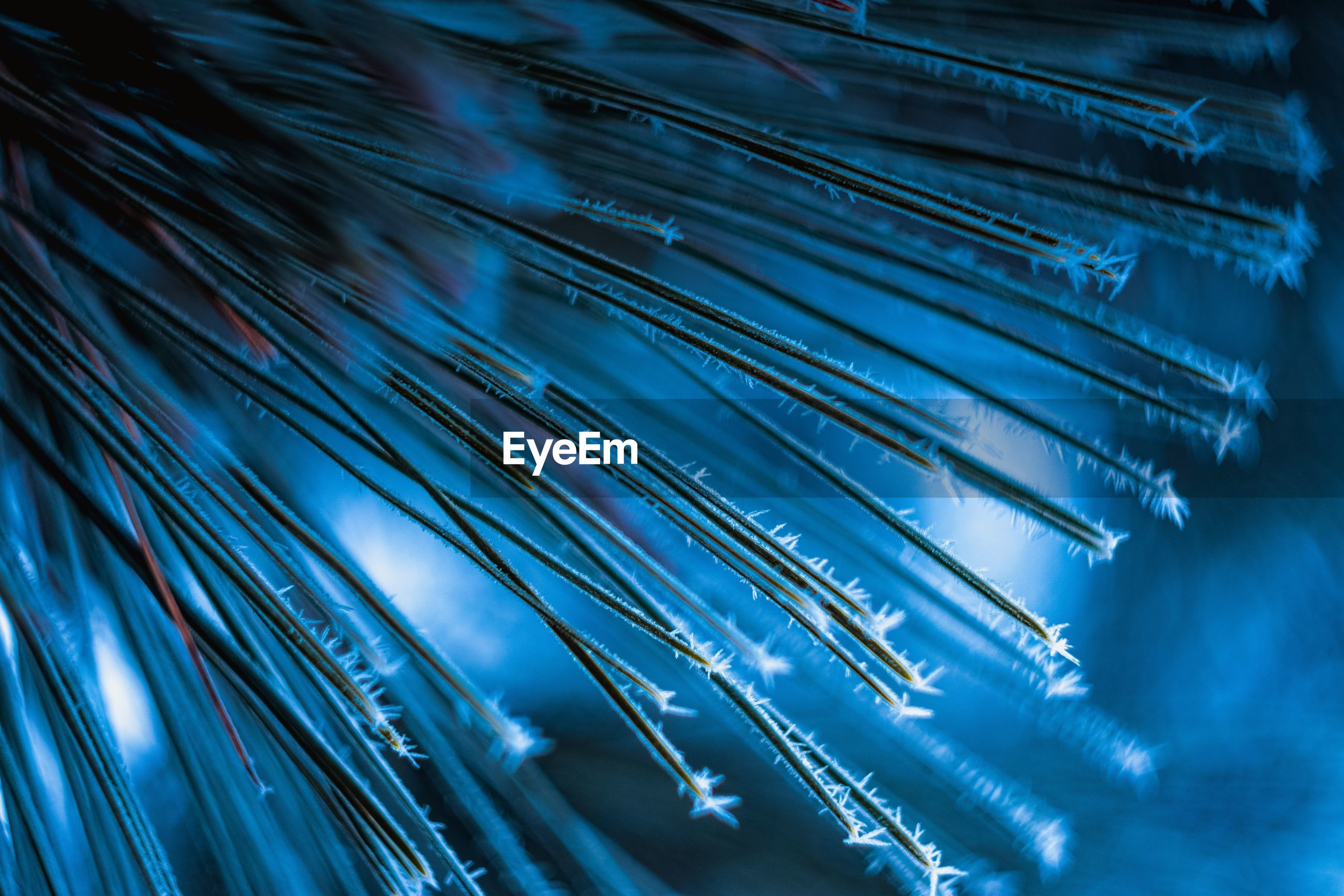 blue, no people, close-up, pattern, full frame, fiber optic, selective focus, metal, light - natural phenomenon, cable, backgrounds, indoors, connection, electricity, technology, abundance, nature, focus on foreground, illuminated, day, power supply