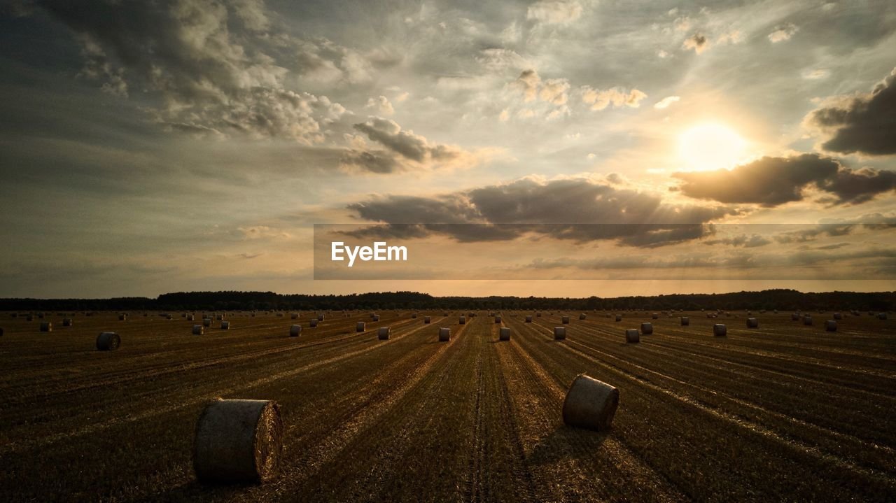 bale, sky, field, agriculture, cloud - sky, hay bale, harvesting, landscape, rural scene, tranquility, tranquil scene, sunset, hay, beauty in nature, no people, scenics, nature, outdoors, day