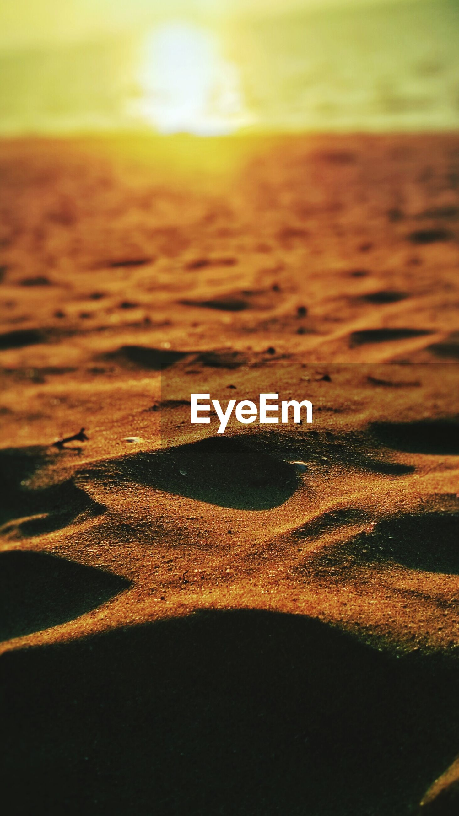 sunset, orange color, scenics, sunlight, tranquility, beauty in nature, landscape, tranquil scene, sun, yellow, nature, sand, no people, sky, outdoors, idyllic, close-up, aerial view, beach, selective focus