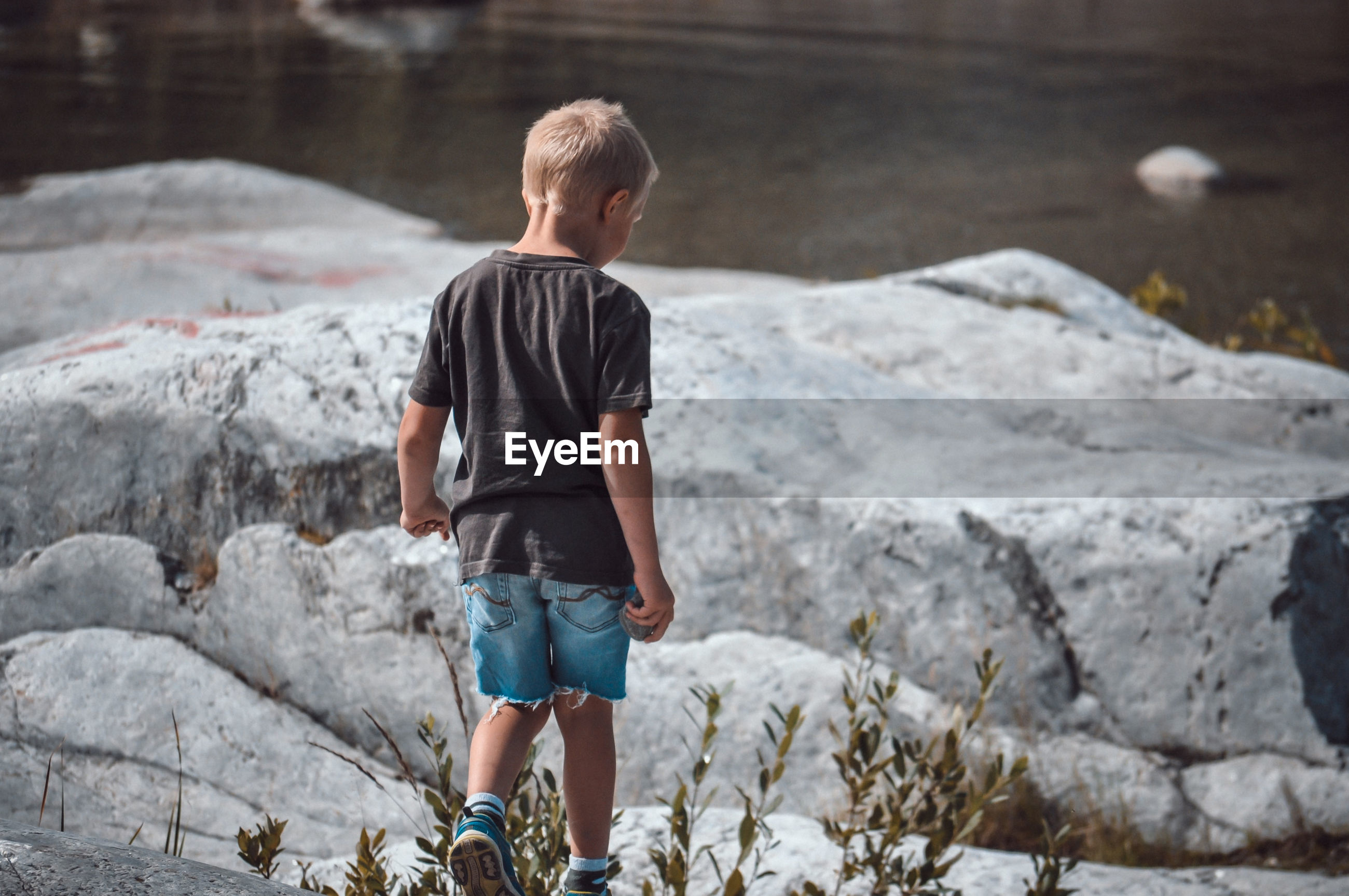 Rear view of boy standing on rock