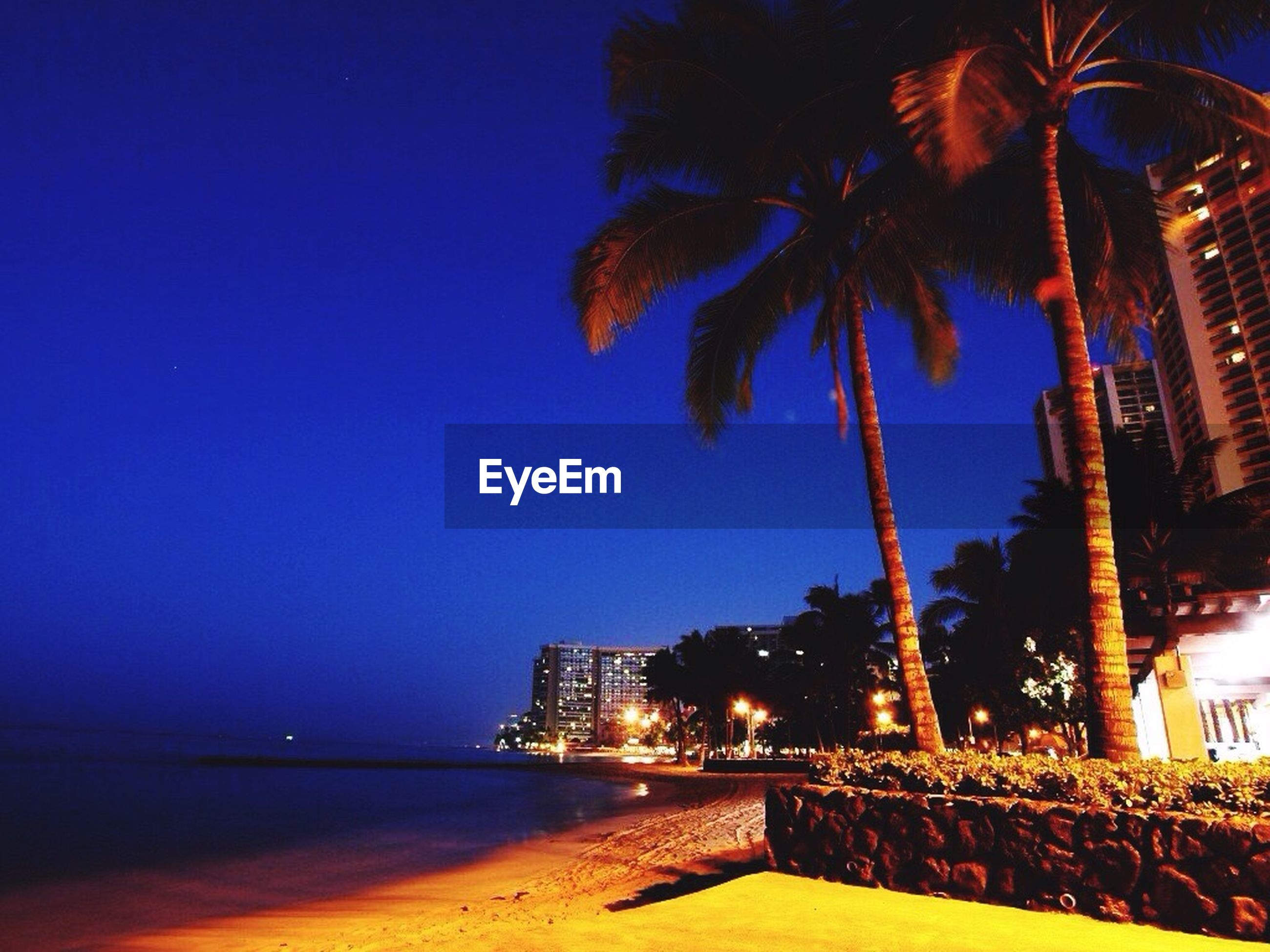 illuminated, night, water, architecture, building exterior, built structure, sea, clear sky, city, beach, blue, palm tree, tree, sky, cityscape, outdoors, shore, waterfront, copy space, travel destinations