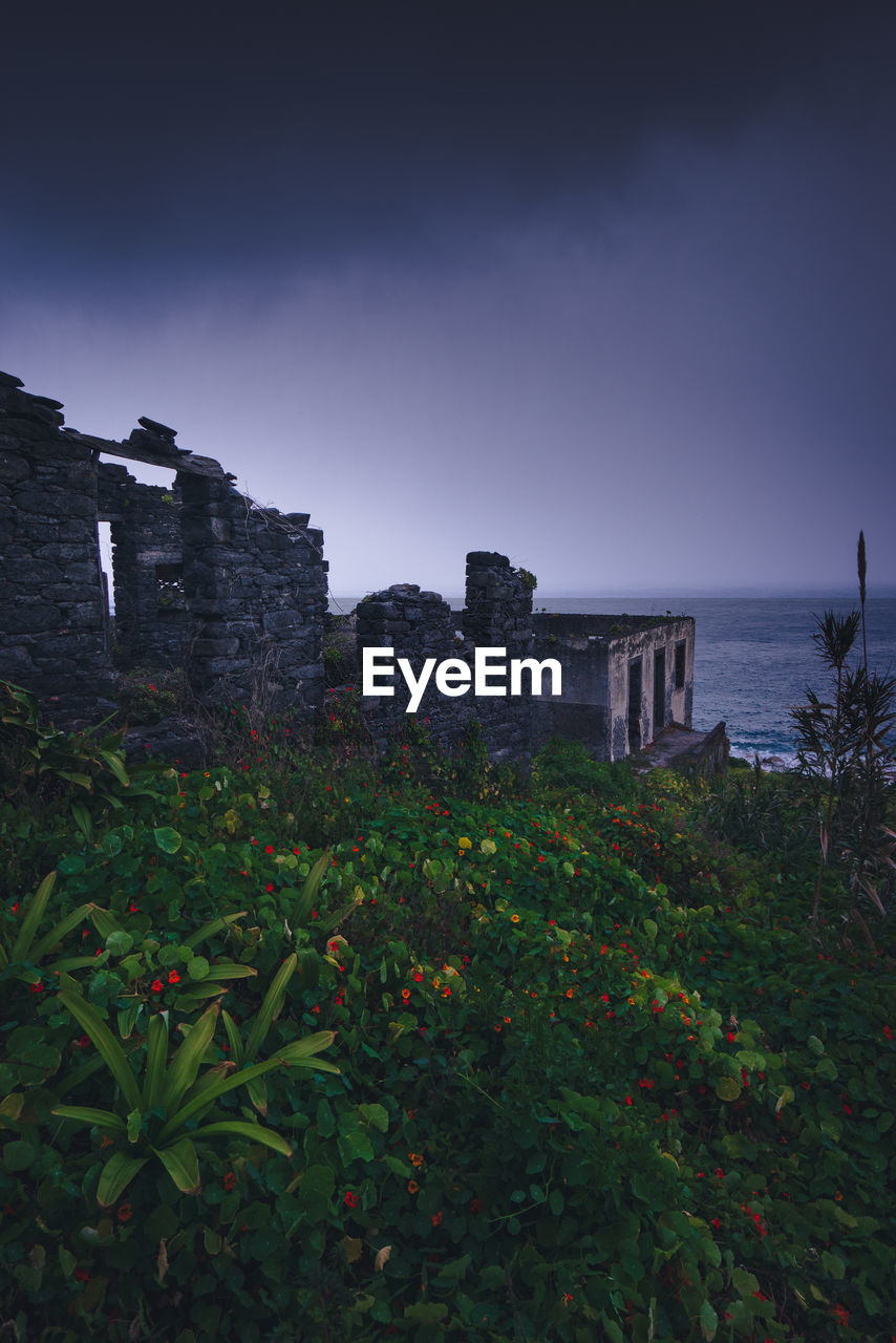 architecture, built structure, sky, nature, plant, history, the past, growth, land, building exterior, water, no people, sea, outdoors, day, building, old, leaf, old ruin