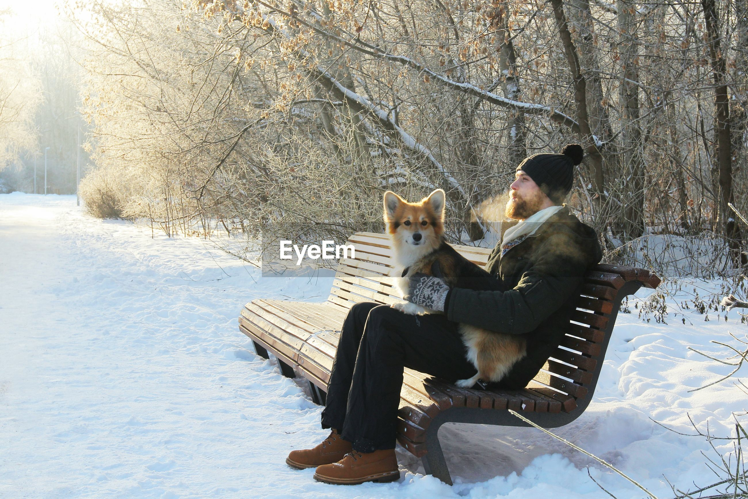 Man with dog sitting on bench at snow covered field