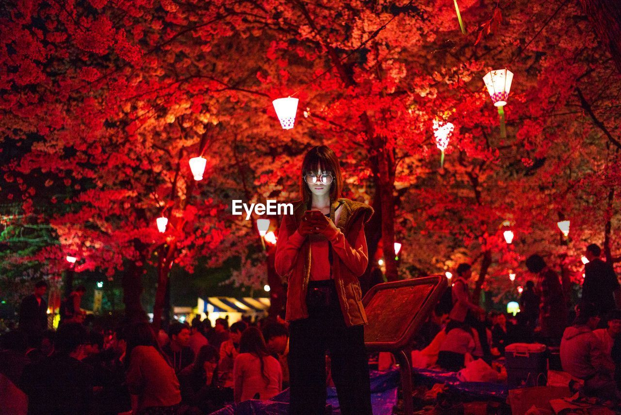Woman Using Mobile Phone Against Illuminated Trees
