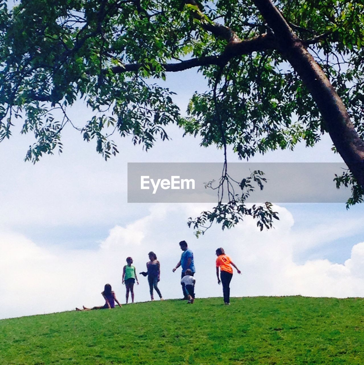 tree, real people, leisure activity, cloud - sky, sky, green color, field, lifestyles, growth, grass, nature, day, outdoors, men, full length, scenics, playing, landscape, beauty in nature, standing, togetherness, women, childhood, large group of people, people