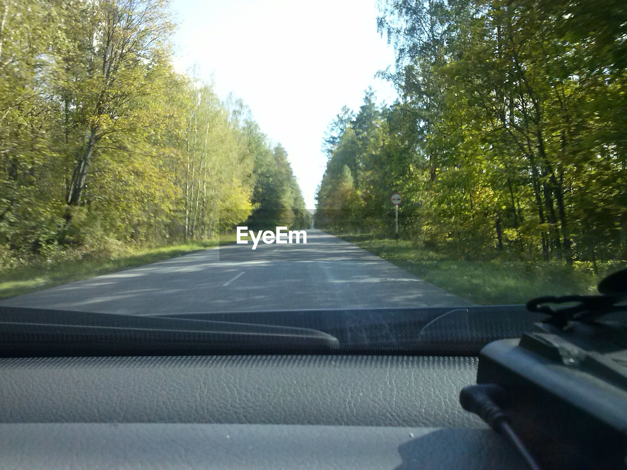 transportation, tree, mode of transport, the way forward, road, windshield, car, land vehicle, vehicle interior, diminishing perspective, road marking, car interior, clear sky, vanishing point, travel, country road, glass - material, transparent, car point of view, sky