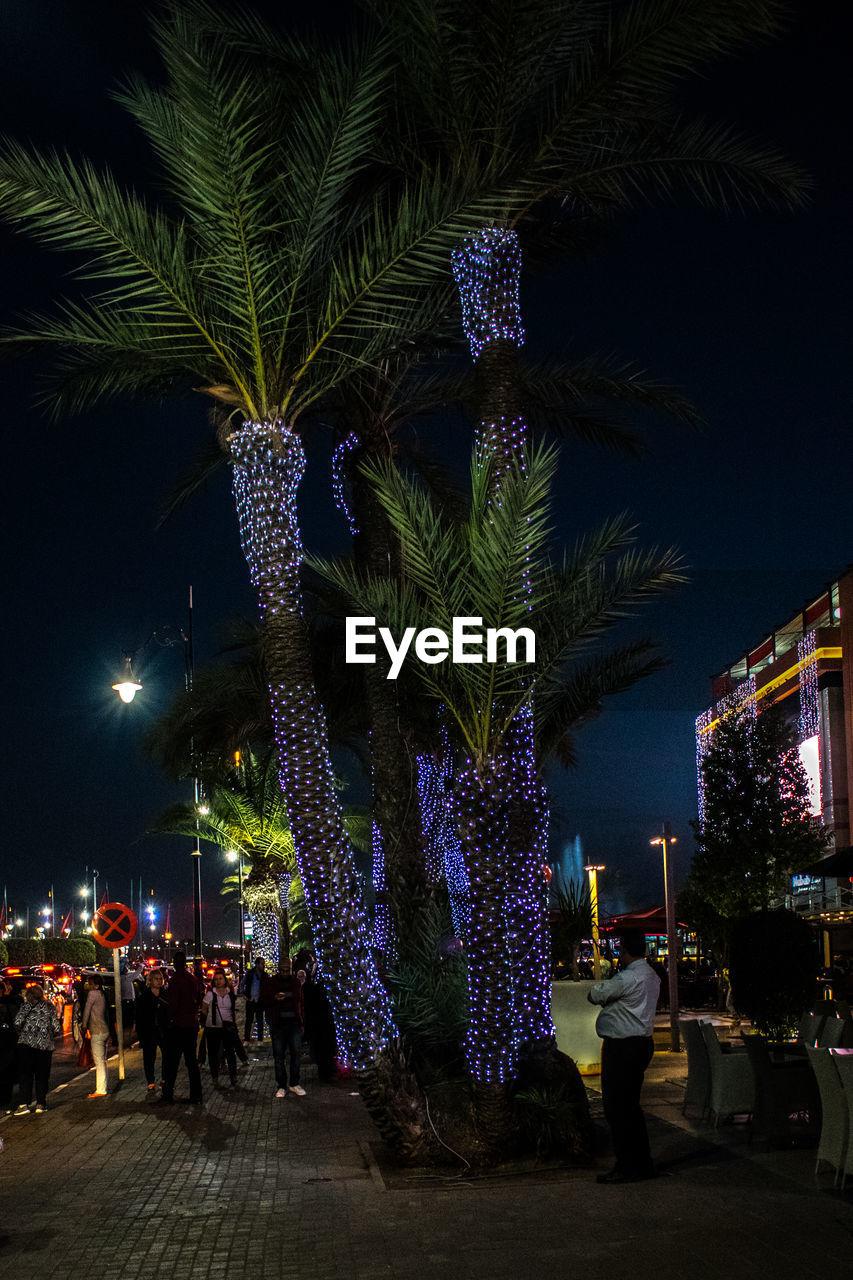 PEOPLE BY ILLUMINATED STREET AT NIGHT