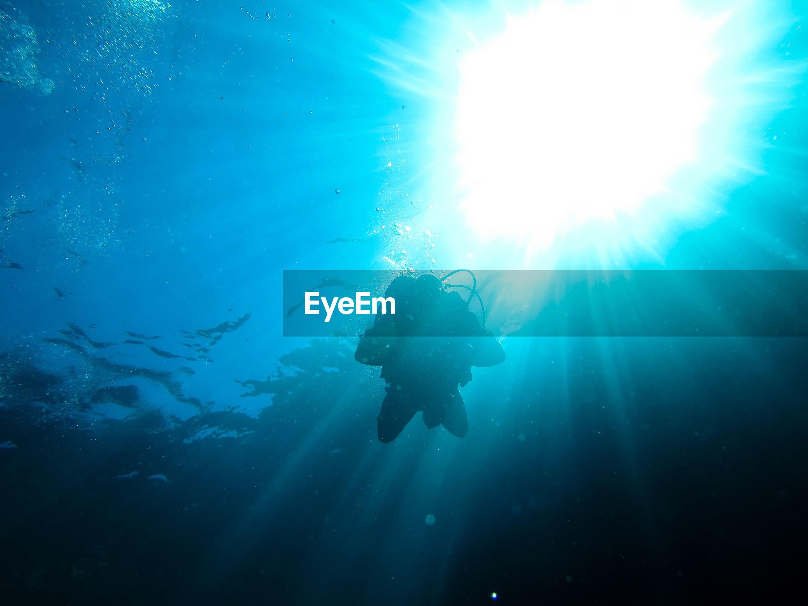 Low angle view of silhouette scuba diver swimming in blue sea