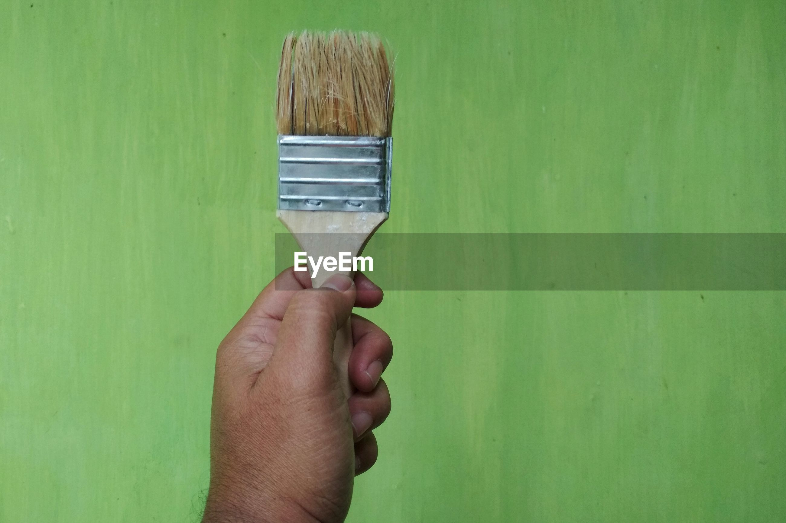 Close-up of hand holding paintbrush against green wall