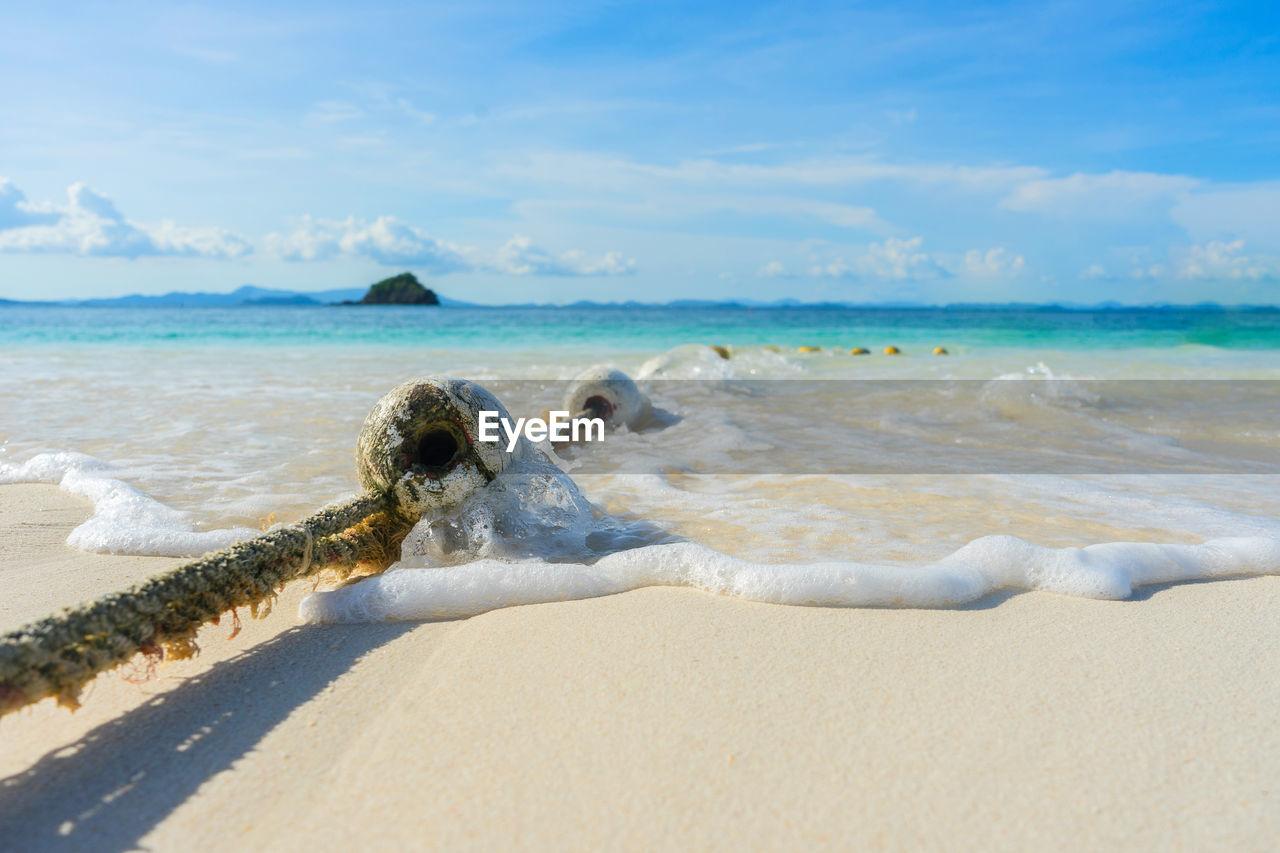 sea, beach, land, water, sky, sand, motion, wave, beauty in nature, nature, scenics - nature, day, cloud - sky, horizon, horizon over water, aquatic sport, sport, surfing, idyllic, outdoors