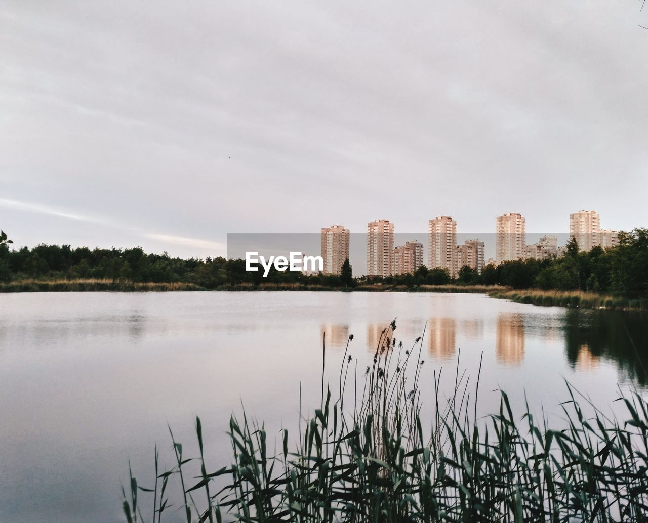 water, reflection, sky, architecture, built structure, plant, building exterior, lake, nature, waterfront, no people, city, tree, day, cloud - sky, building, growth, urban skyline, outdoors, office building exterior, skyscraper