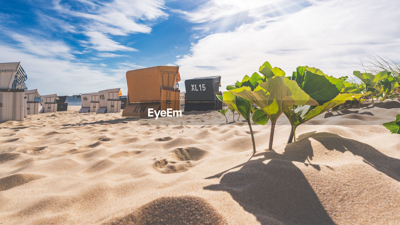 sand, land, sky, nature, beach, cloud - sky, sunlight, shadow, no people, text, day, outdoors, built structure, architecture, number, beauty in nature, scenics - nature, communication, western script, plant
