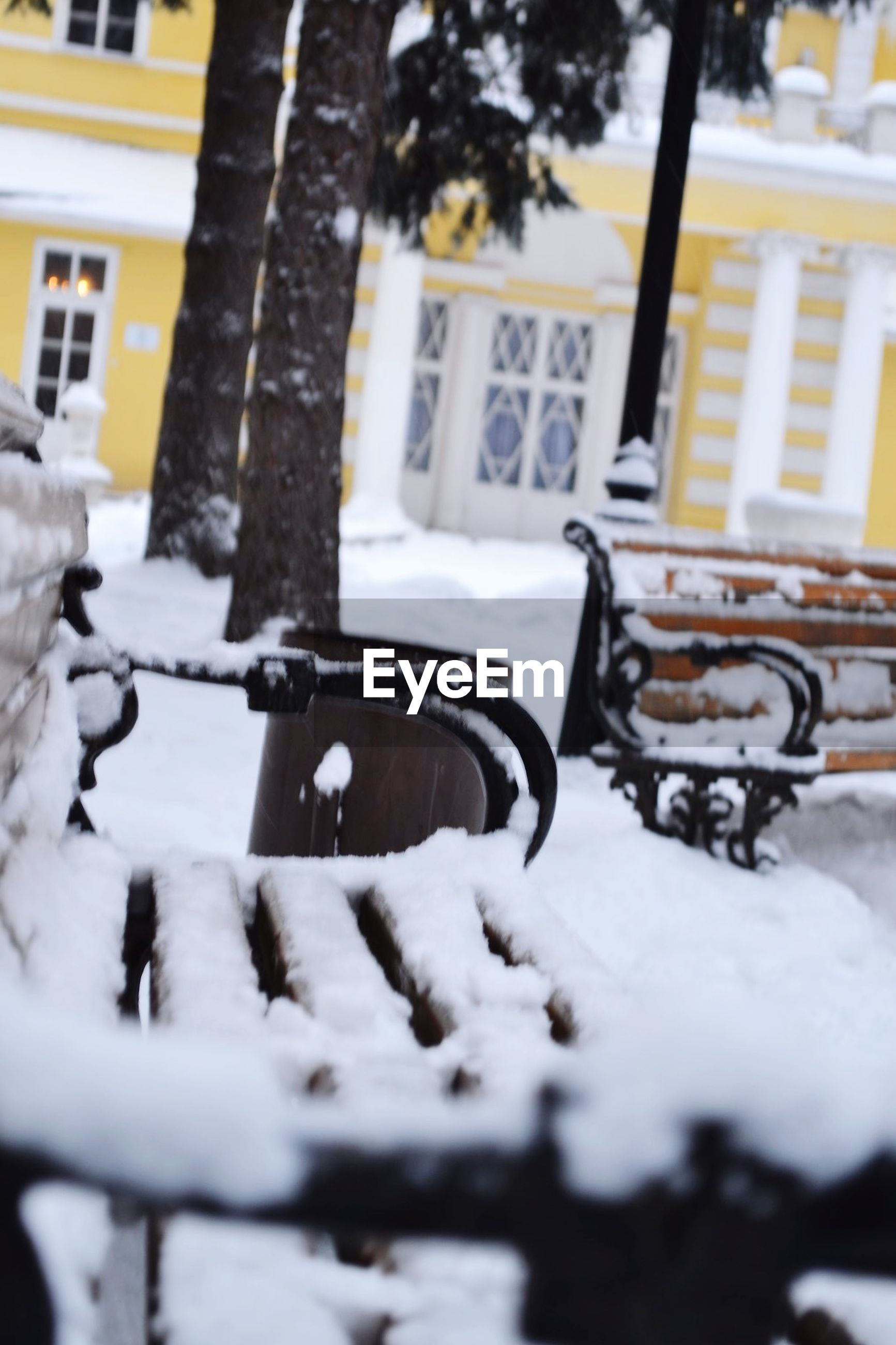 building exterior, architecture, built structure, transportation, land vehicle, mode of transport, street, snow, car, window, focus on foreground, tree, winter, city, selective focus, building, season, bicycle, cold temperature, outdoors
