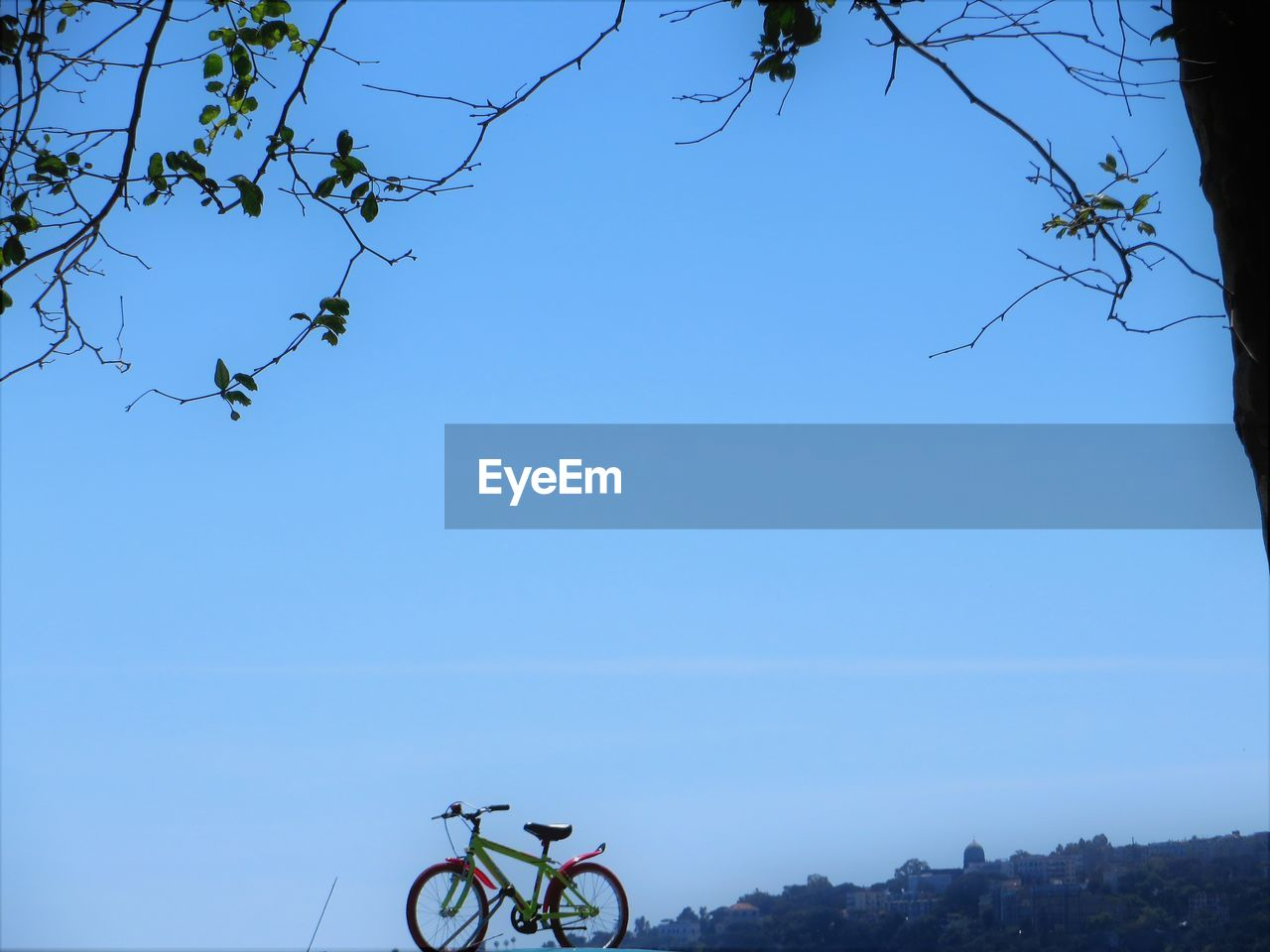 bicycle, tree, clear sky, transportation, outdoors, low angle view, day, blue, sky, no people, nature, beauty in nature, animal themes