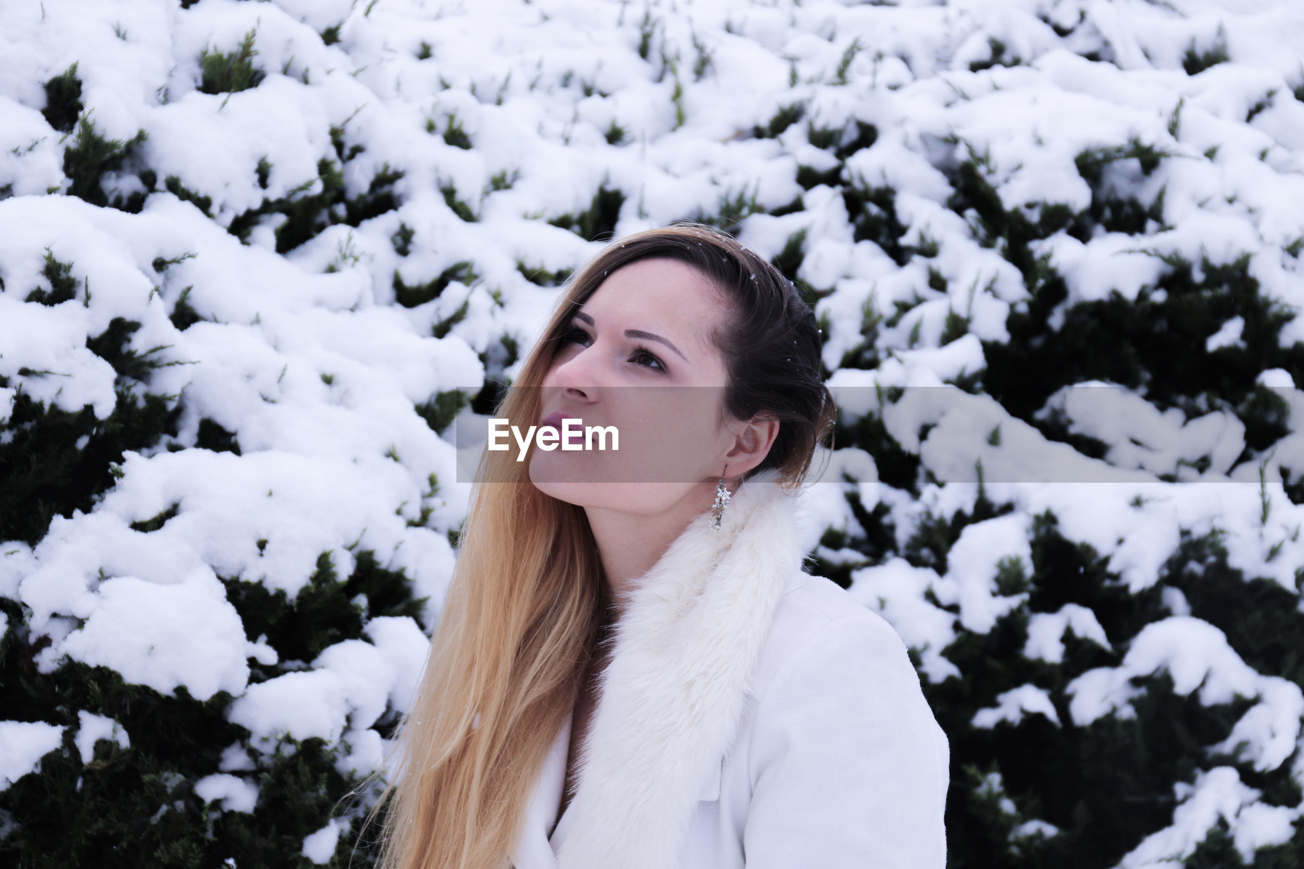 Woman looking away against snowy plants during winter