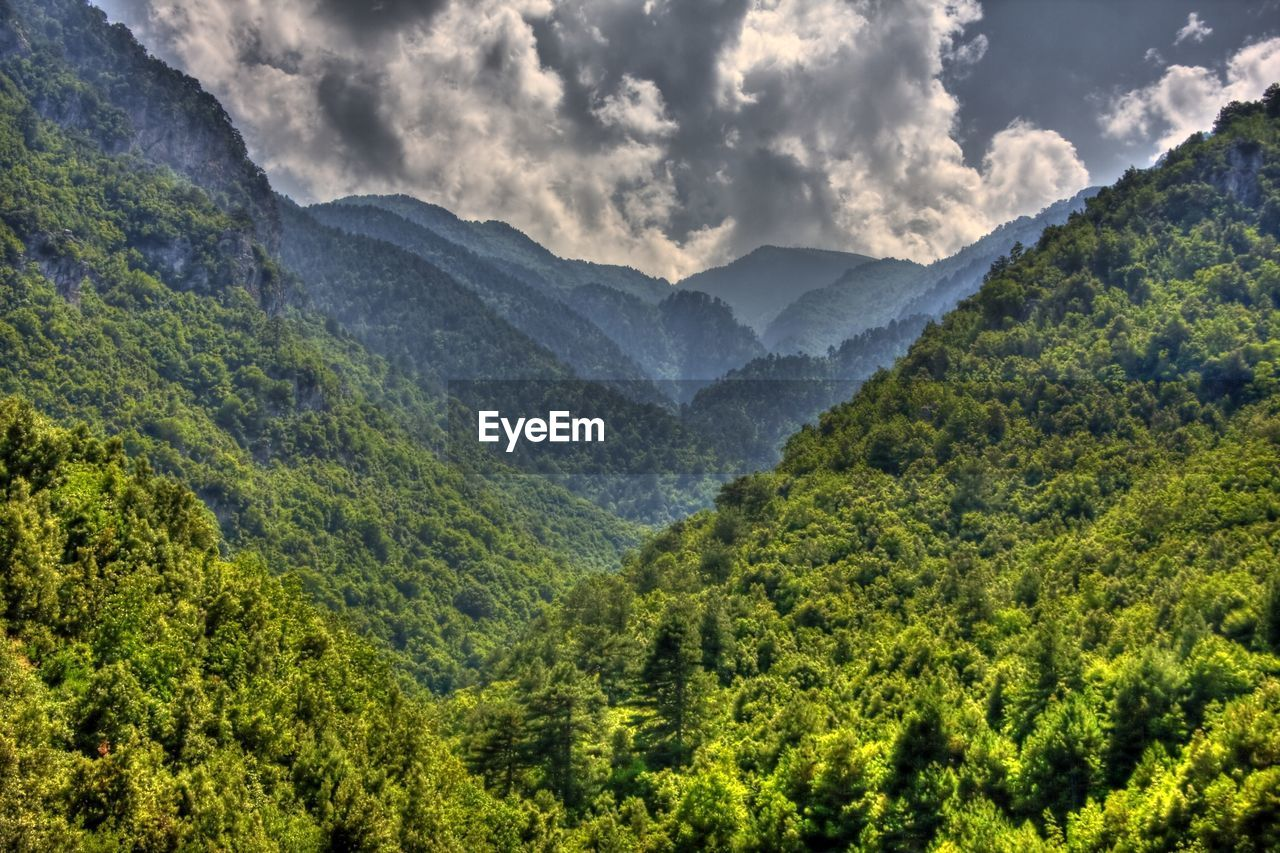 scenics - nature, mountain, beauty in nature, tree, plant, cloud - sky, tranquility, tranquil scene, mountain range, forest, nature, non-urban scene, no people, landscape, sky, green color, environment, land, foliage, day, outdoors, woodland, mountain peak