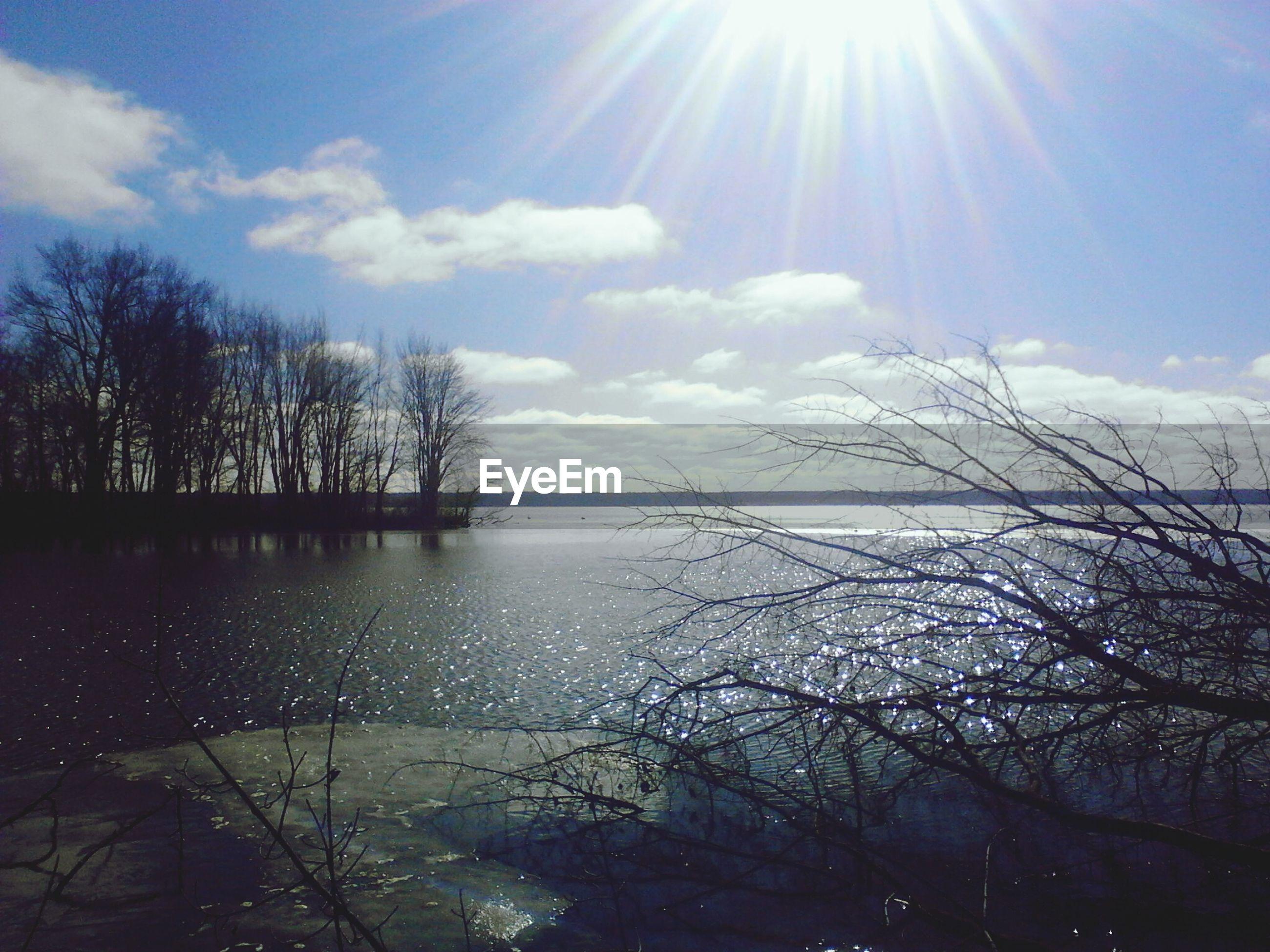 sun, sunbeam, water, sunlight, tranquility, tranquil scene, beauty in nature, scenics, tree, sky, lens flare, nature, bare tree, reflection, lake, sunny, idyllic, branch, day, bright