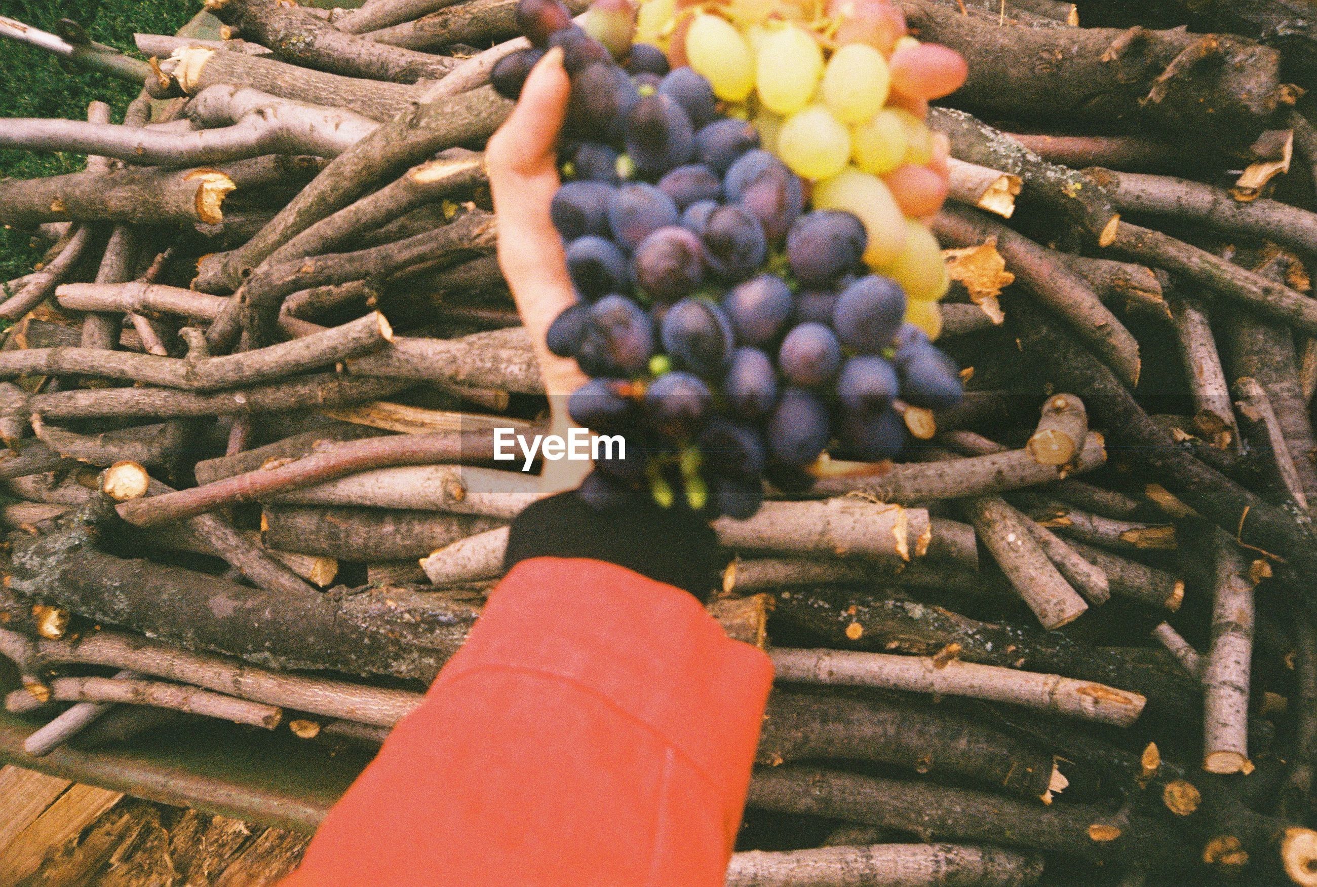 HIGH ANGLE VIEW OF HAND BERRIES ON MARKET
