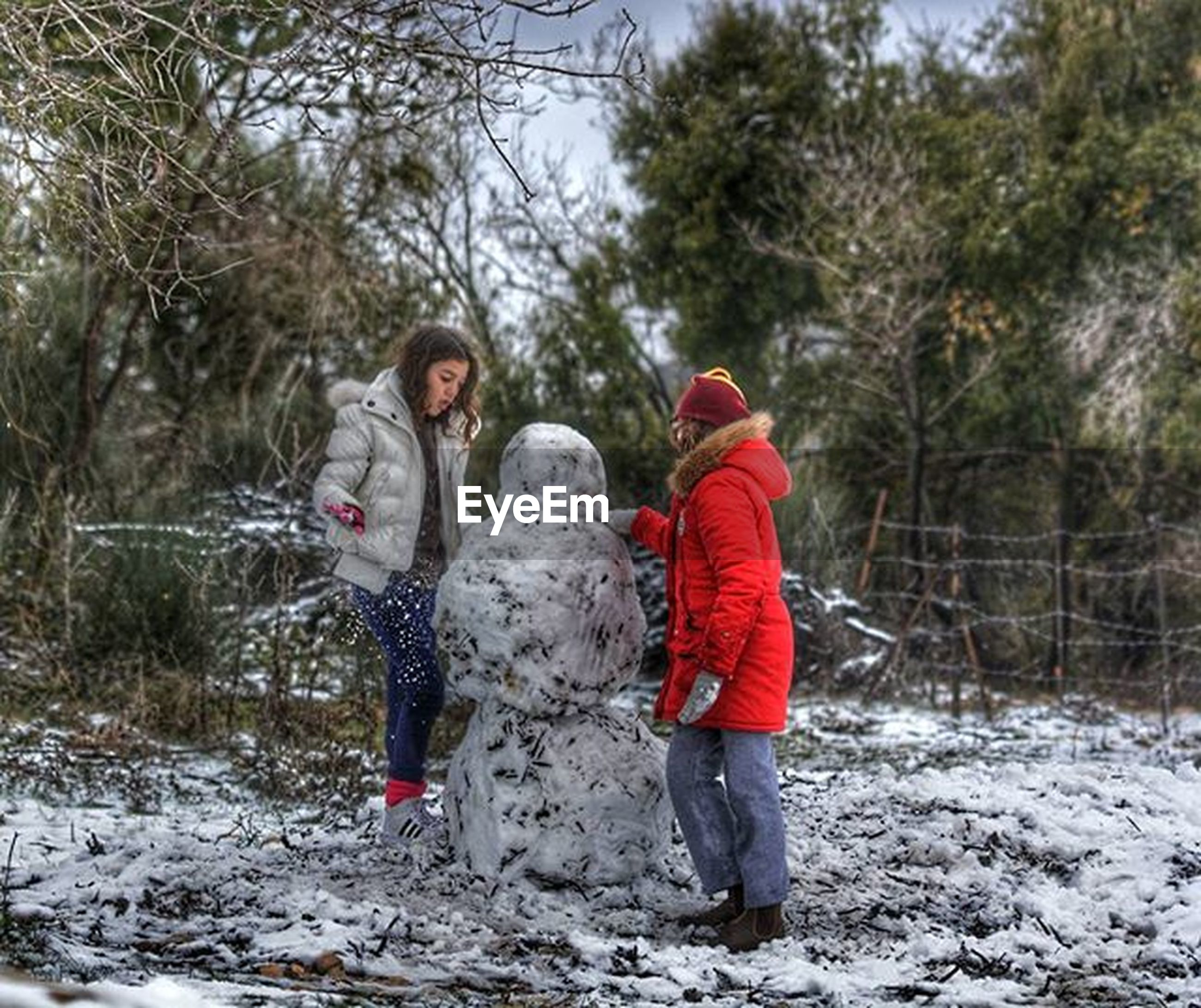 winter, snow, full length, cold temperature, childhood, lifestyles, tree, leisure activity, warm clothing, season, elementary age, boys, togetherness, girls, casual clothing, person, rear view