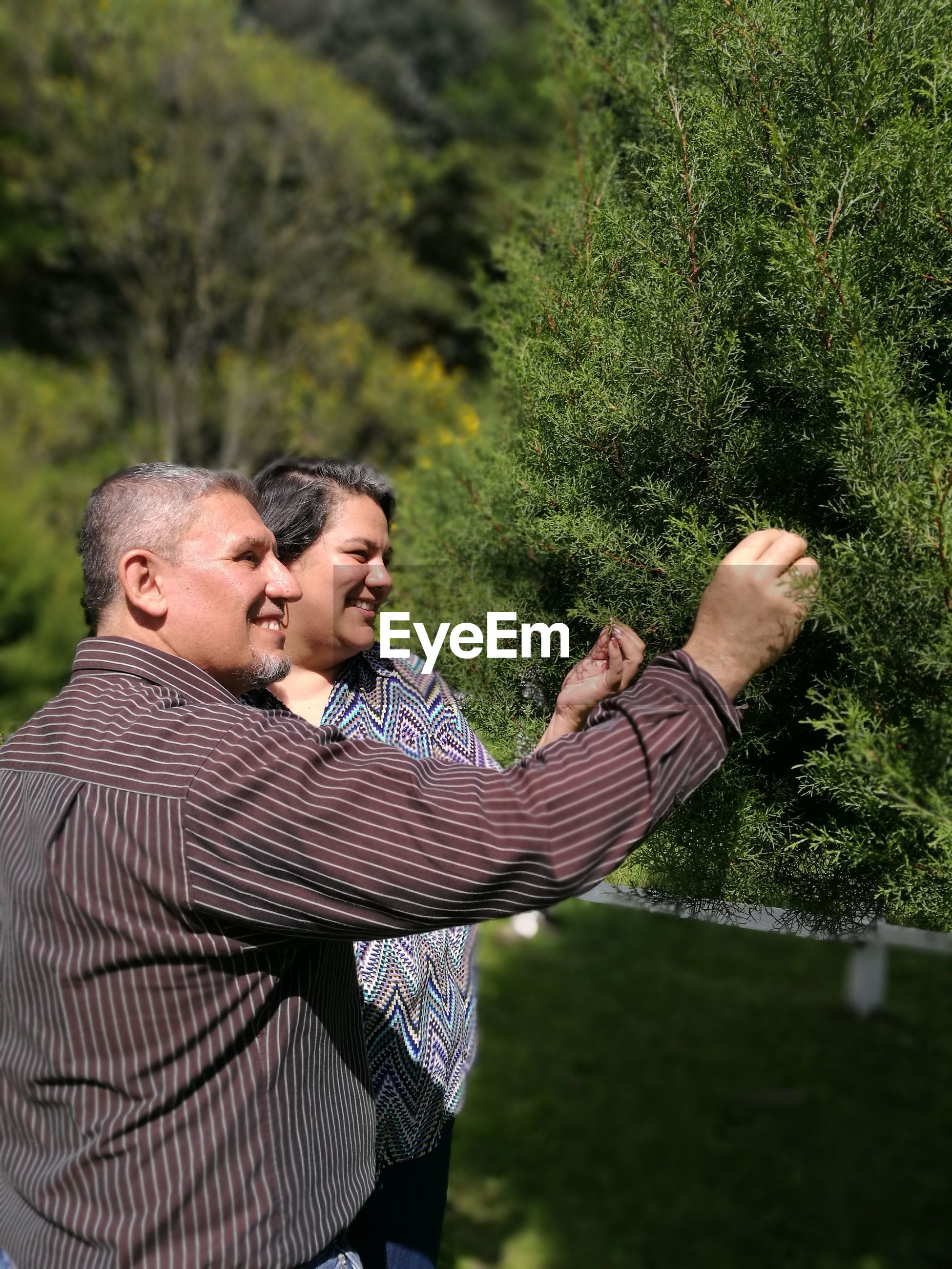 Smiling couple touching plants