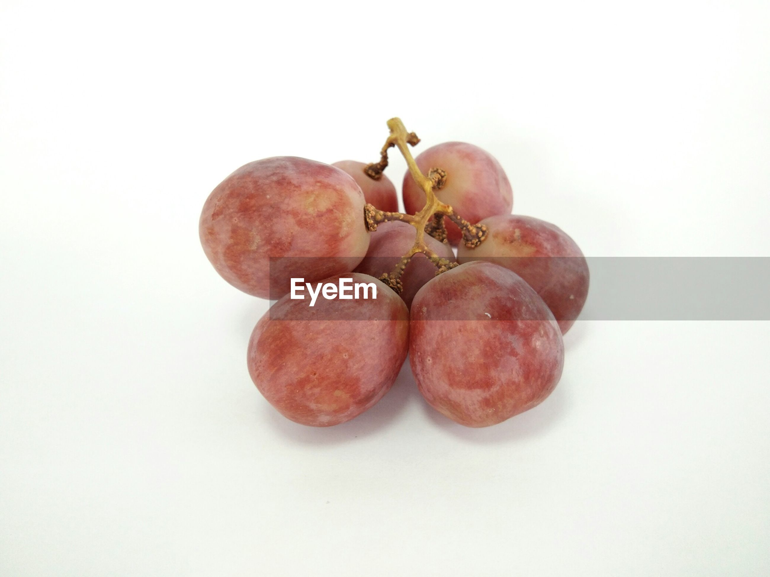 High angle view of grapes against white background