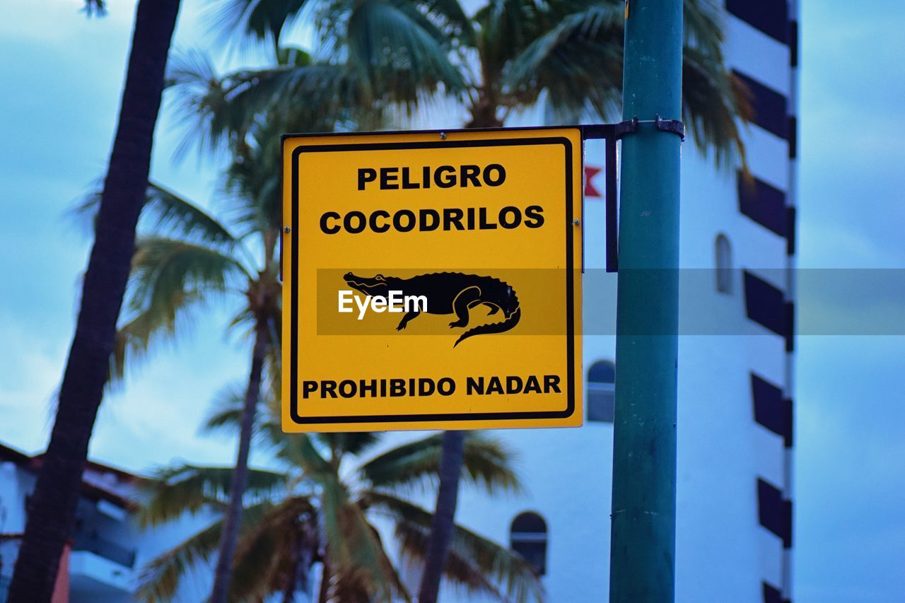 sign, communication, text, western script, information, focus on foreground, tree, information sign, warning sign, nature, palm tree, plant, no people, tropical climate, guidance, close-up, low angle view, day, yellow, representation, outdoors