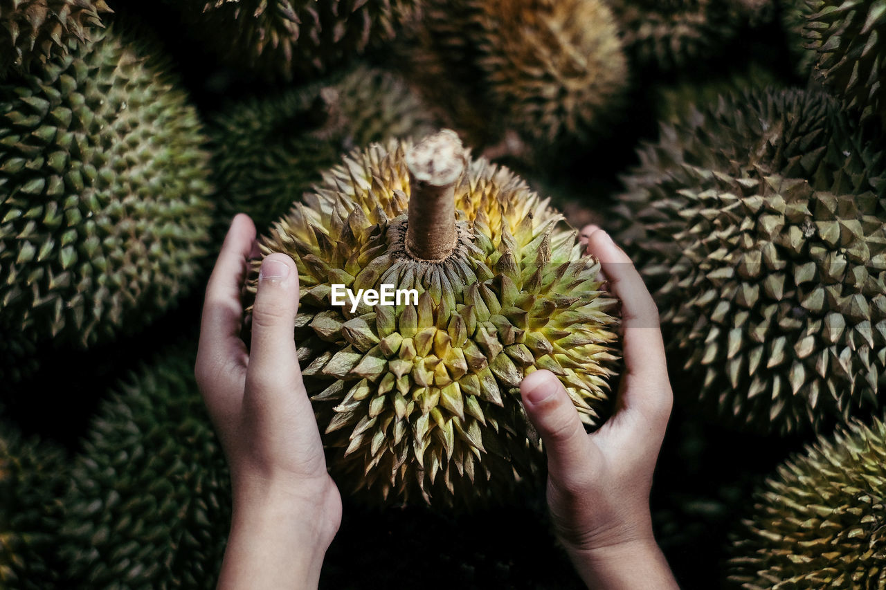 Cropped image of child holding durian at market stall