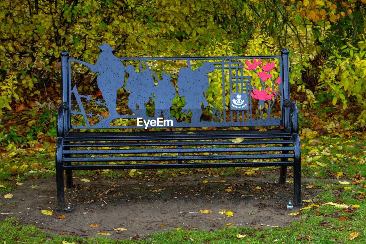 bench, leaf, nature, plant, seat, day, plant part, no people, empty, autumn, land, metal, tree, old, absence, outdoors, park, wood - material, yellow, transportation, park bench, change