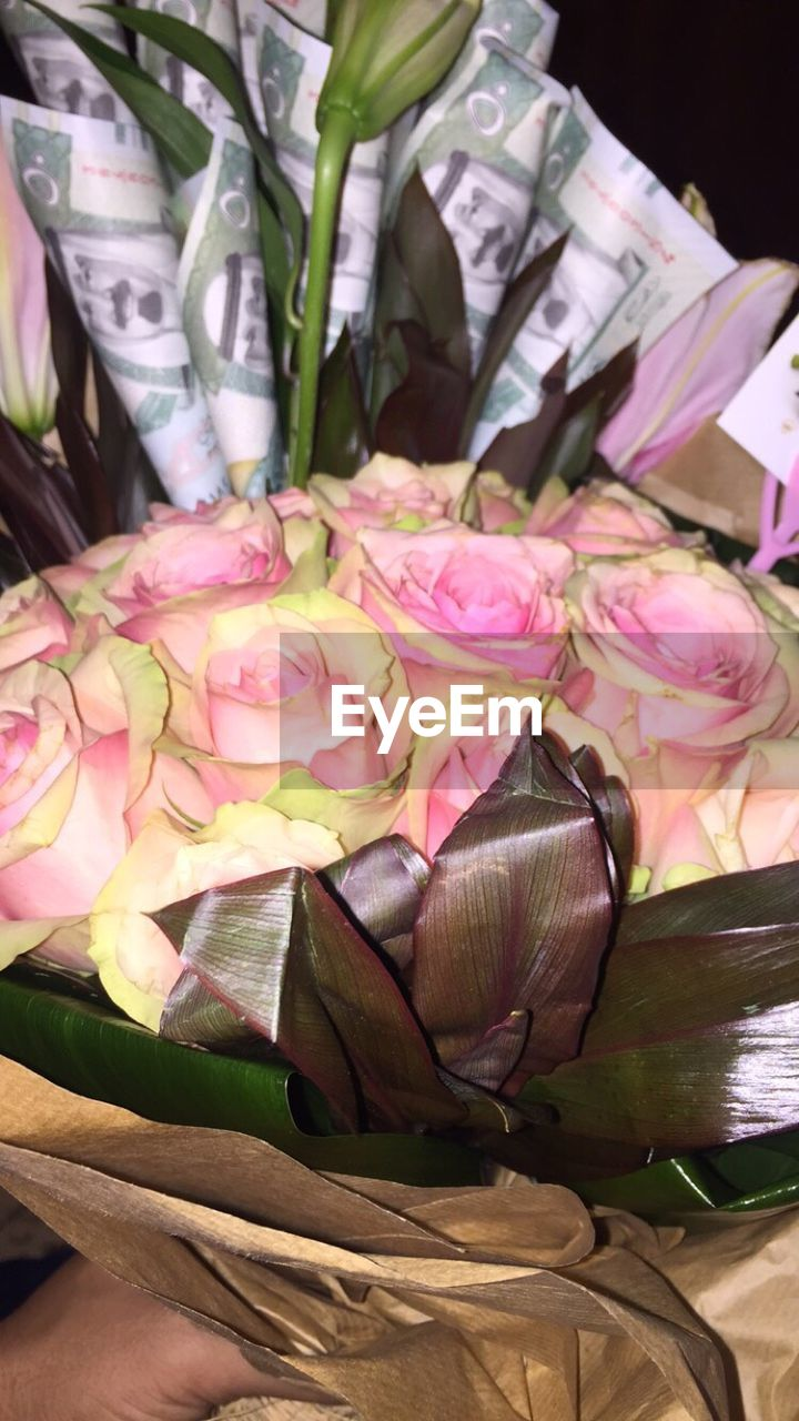 flower, for sale, freshness, retail, no people, variation, indoors, market, close-up, food, day, beauty in nature, fragility, flower head