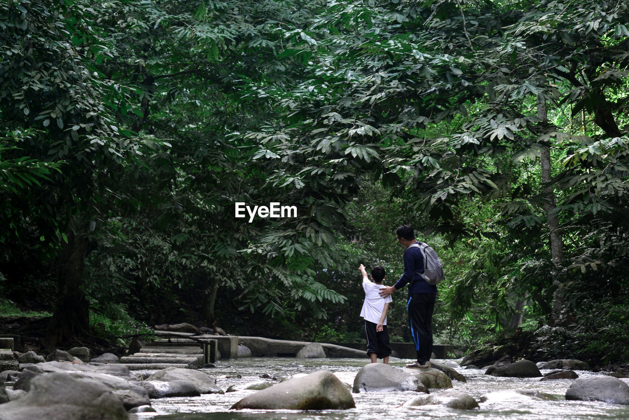 Rear View Of Son Pointing Towards Trees While Standing By Father In Stream