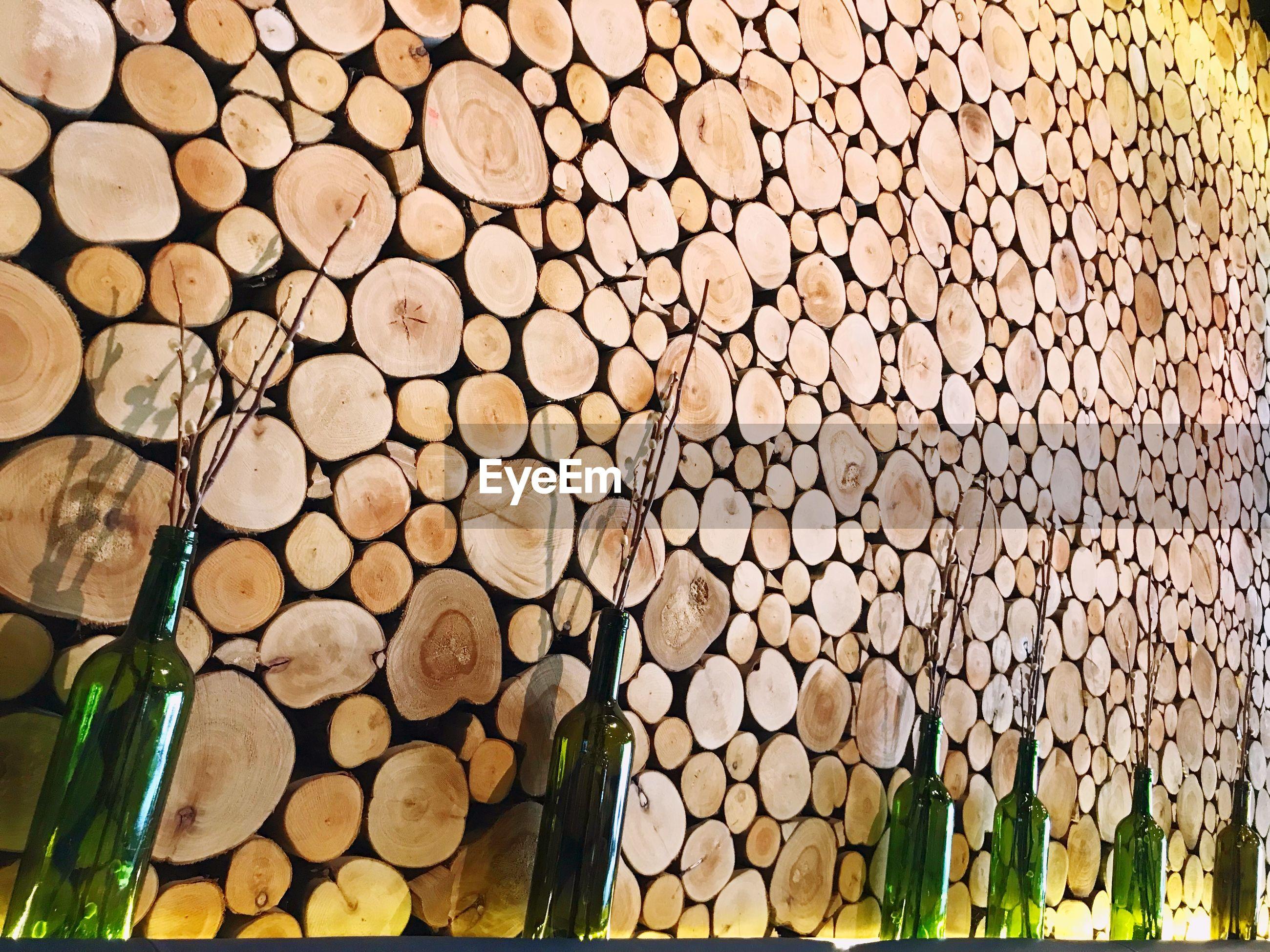 Bottles by logs