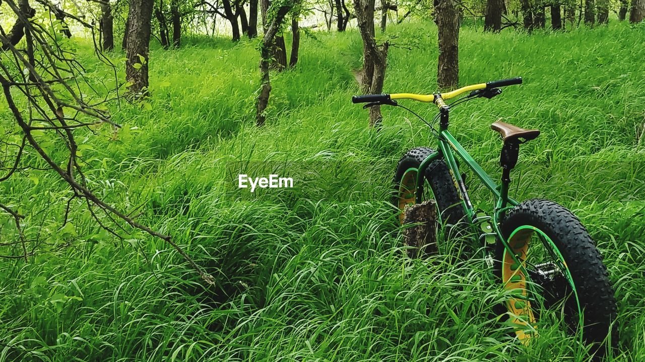 bicycle, transportation, grass, green color, mode of transport, land vehicle, stationary, day, nature, no people, outdoors, field, growth, wheel, tree, tranquility, beauty in nature, bicycle rack, mountain bike, tire
