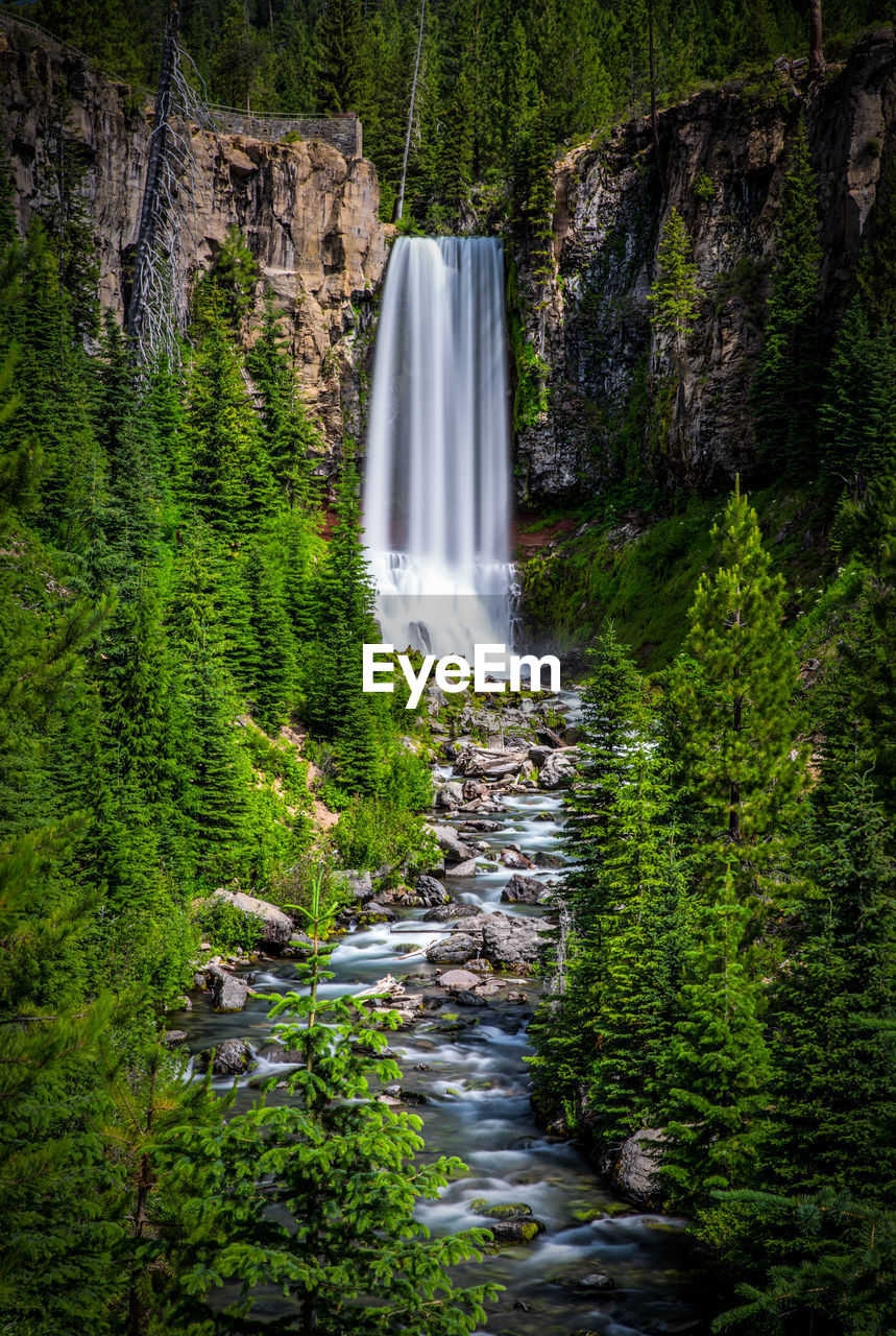 waterfall, water, plant, forest, tree, motion, flowing water, rock, scenics - nature, beauty in nature, nature, land, long exposure, blurred motion, environment, rock - object, solid, growth, day, no people, flowing, outdoors, power in nature, stream - flowing water, falling water, rainforest, purity