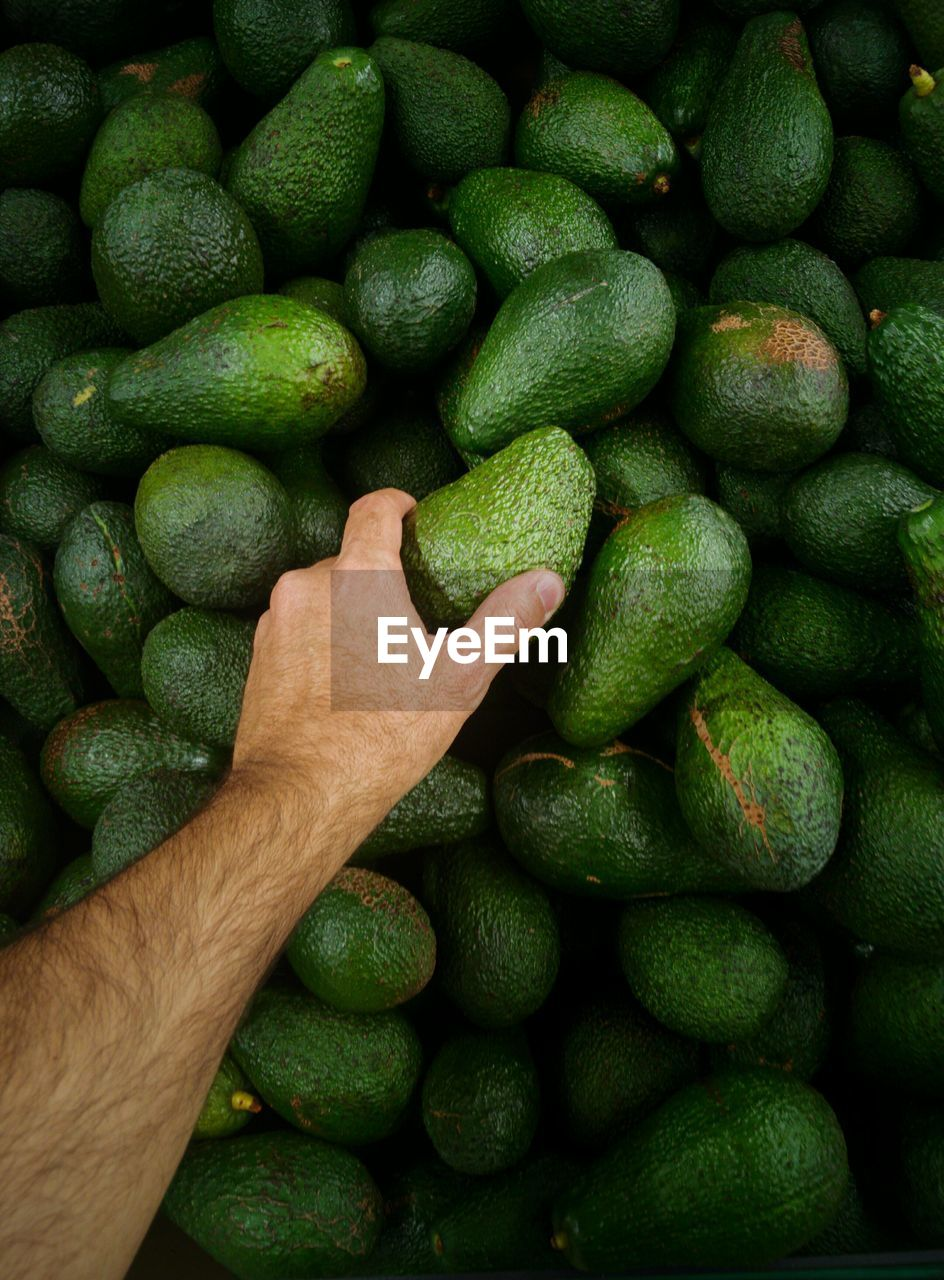 High angle view of green avocado for sale in market