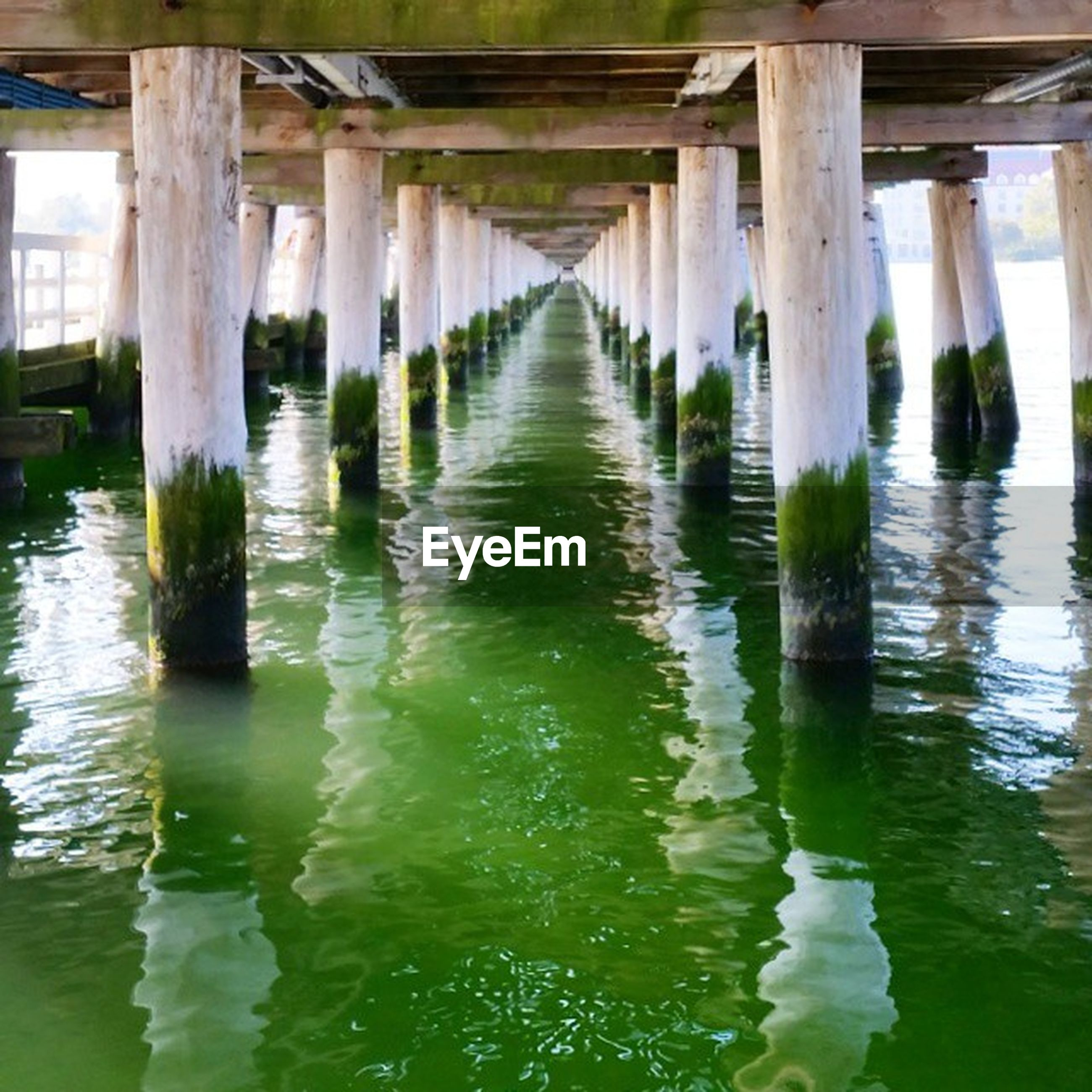 water, built structure, architecture, waterfront, pier, reflection, wood - material, in a row, diminishing perspective, river, bridge - man made structure, connection, architectural column, day, nature, no people, rippled, tranquility, wooden post, bridge