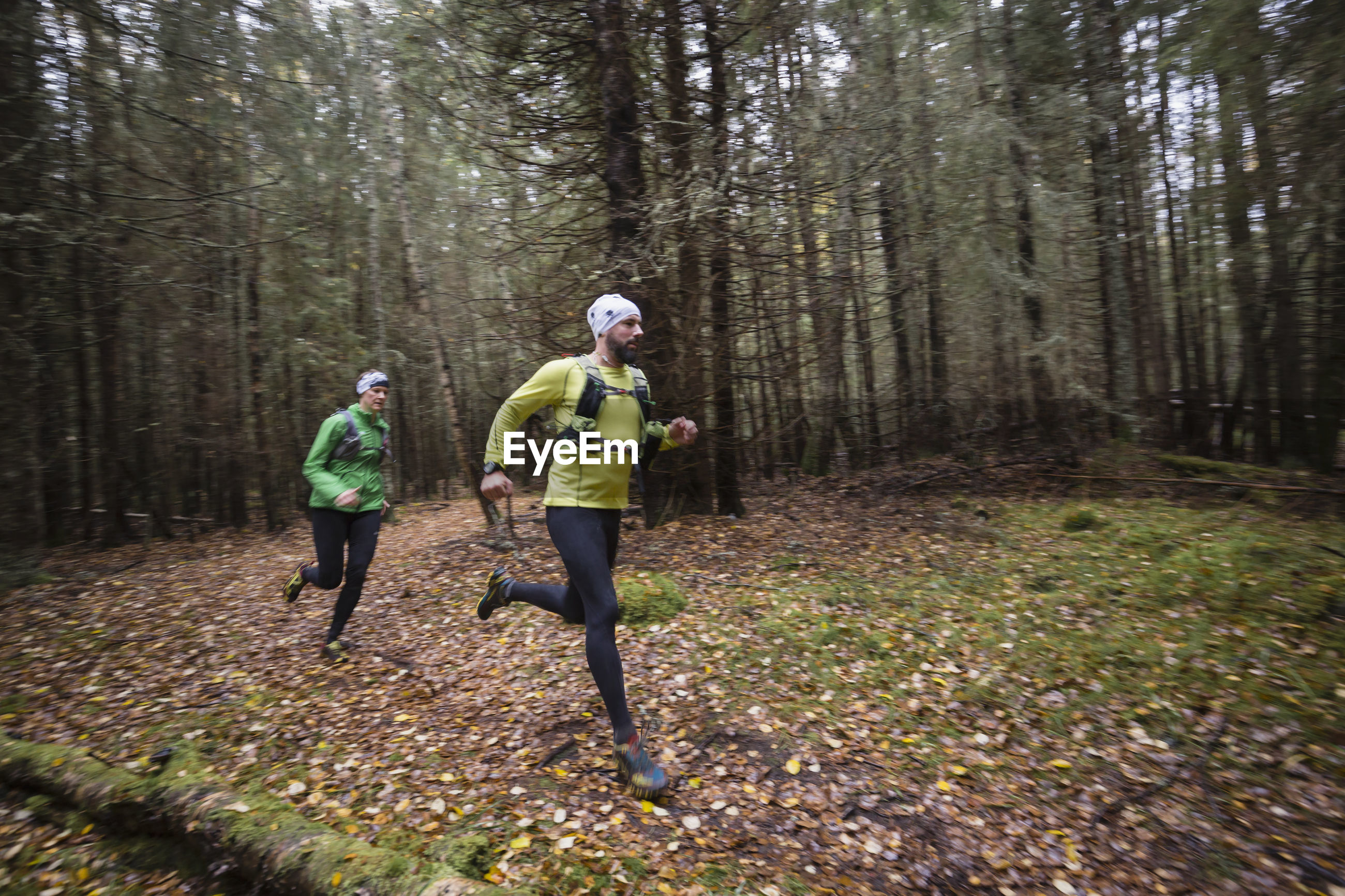 REAR VIEW OF PEOPLE RUNNING ON ROAD IN FOREST