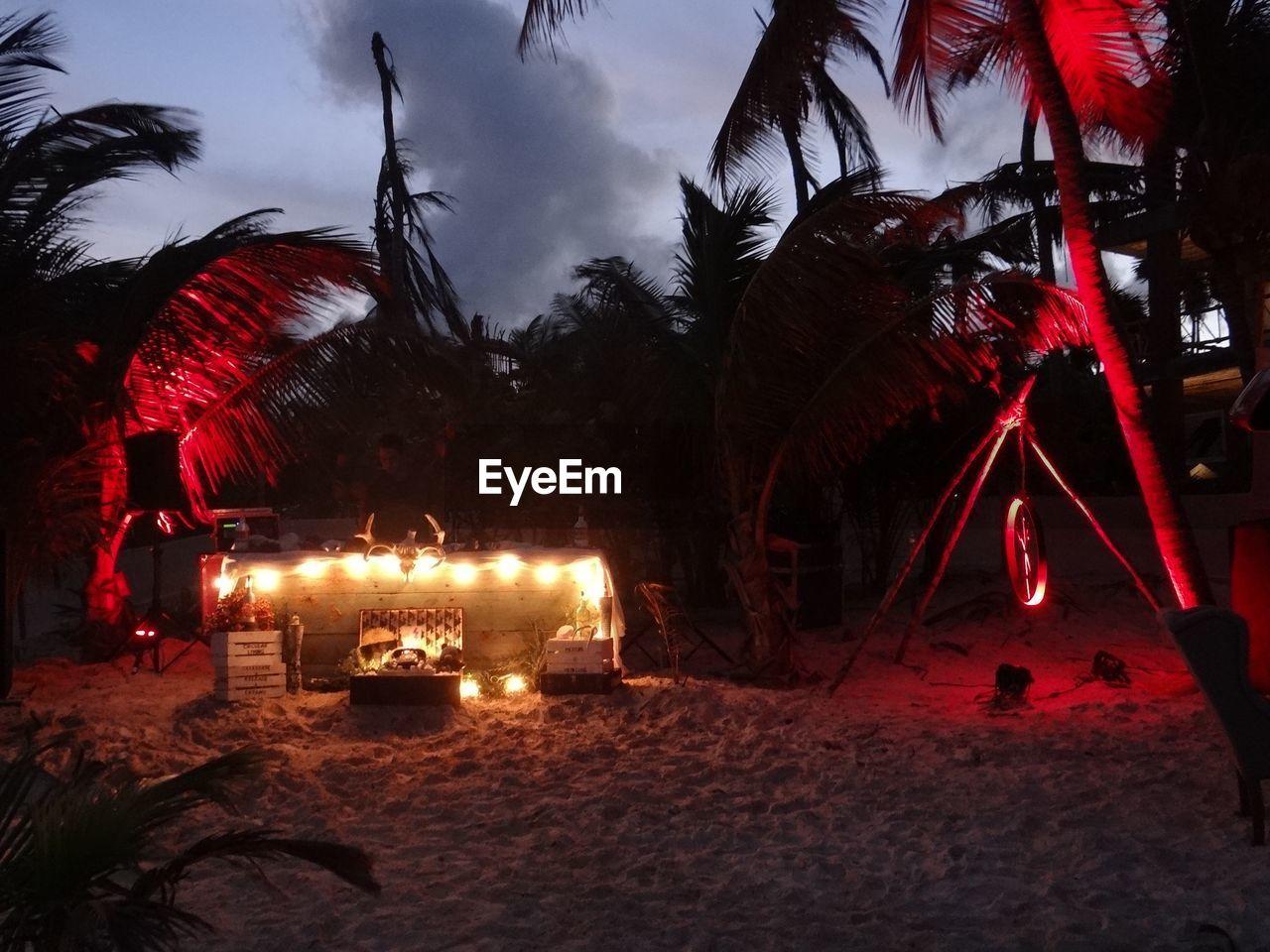 night, illuminated, tree, celebration, outdoors, sky, palm tree, no people, nature
