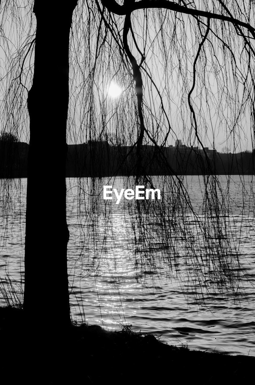 bare tree, tree, reflection, silhouette, lake, branch, tranquility, outdoors, nature, tranquil scene, no people, water, tree trunk, beauty in nature, scenics, day, sky