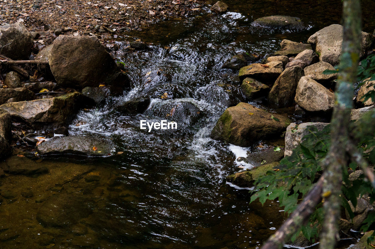 water, rock, solid, nature, rock - object, no people, motion, day, flowing water, beauty in nature, stream - flowing water, plant, flowing, outdoors, forest, land, tranquility, downloading, scenics - nature