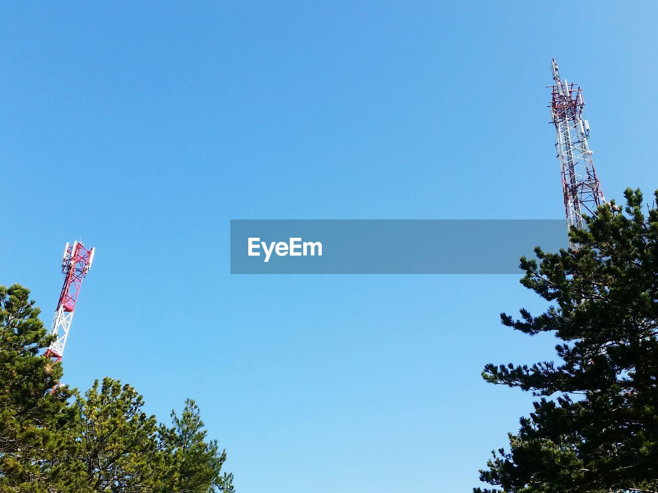 communication, tree, broadcasting, low angle view, copy space, day, telecommunications equipment, tower, antenna - aerial, technology, satellite dish, clear sky, global communications, wireless technology, blue, no people, outdoors, nature