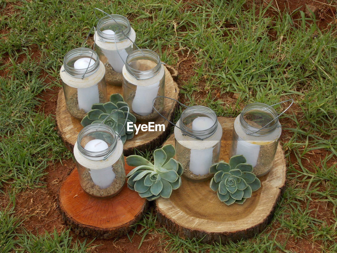 High angle view of candles in jars with succulent plants on tree stumps