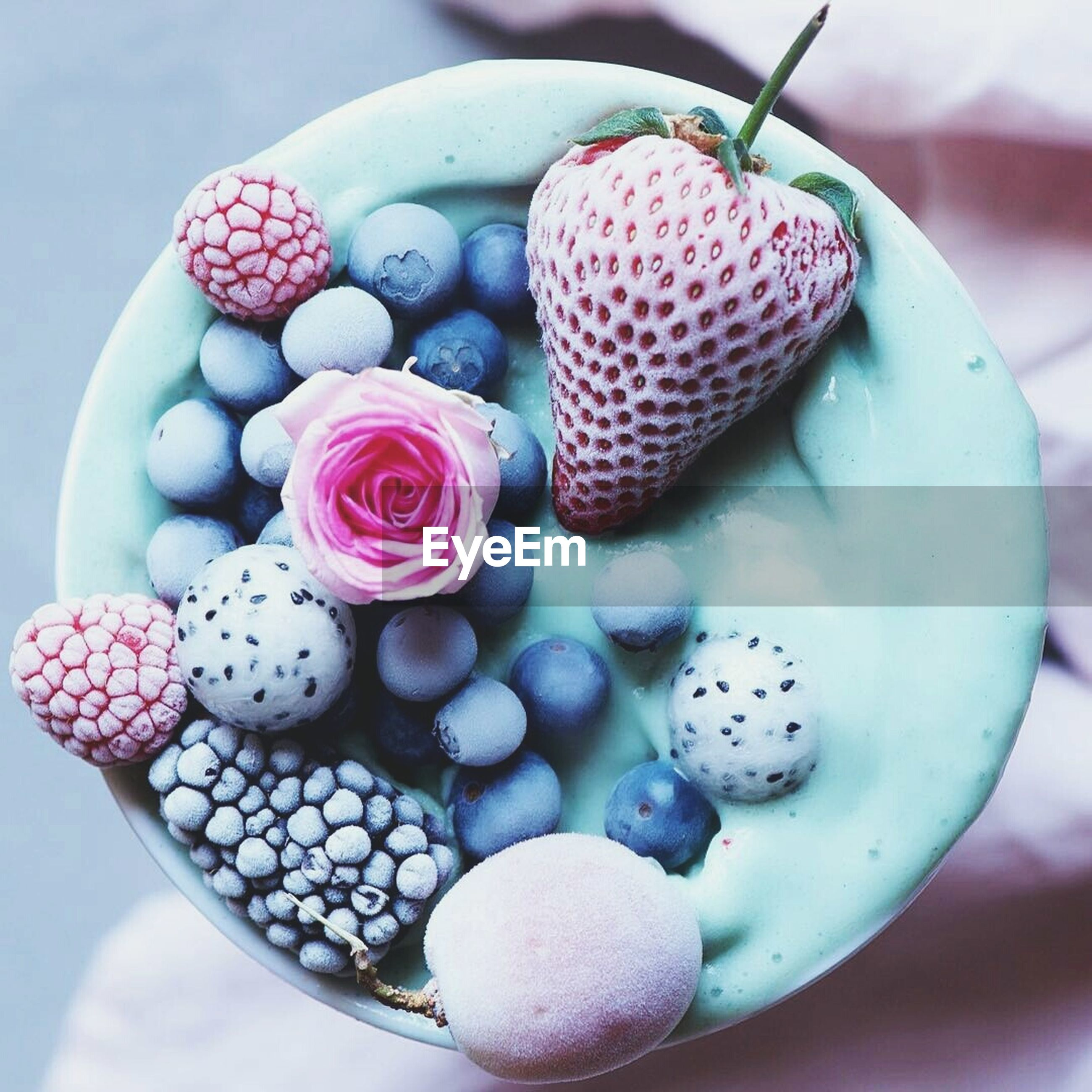 food, fruit, food and drink, close-up, freshness, variation, no people, day, blueberry, multi colored, sweet food, healthy eating, dessert, outdoors, nature, ready-to-eat