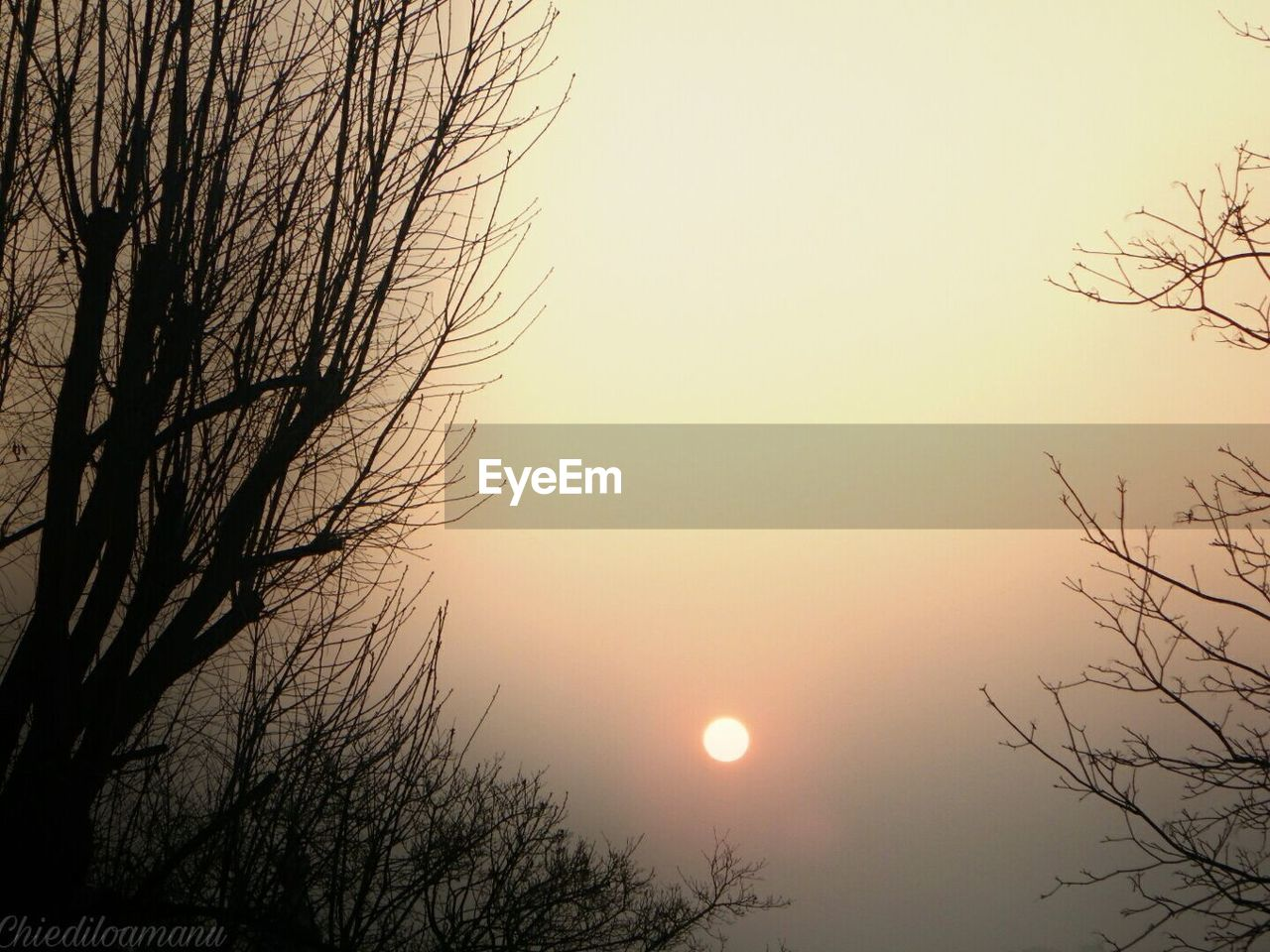 sun, bare tree, nature, beauty in nature, tree, tranquility, sunset, scenics, branch, tranquil scene, no people, silhouette, outdoors, sky, low angle view, clear sky, moon, day
