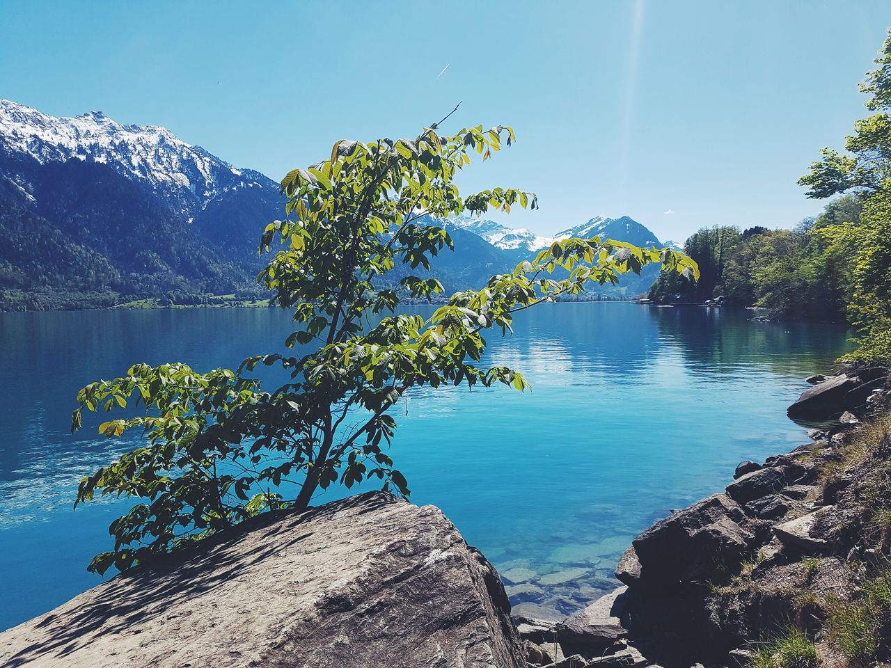 water, mountain, beauty in nature, scenics - nature, sky, tranquil scene, nature, tranquility, day, tree, lake, plant, no people, sunlight, non-urban scene, idyllic, blue, outdoors, mountain range, mountain peak