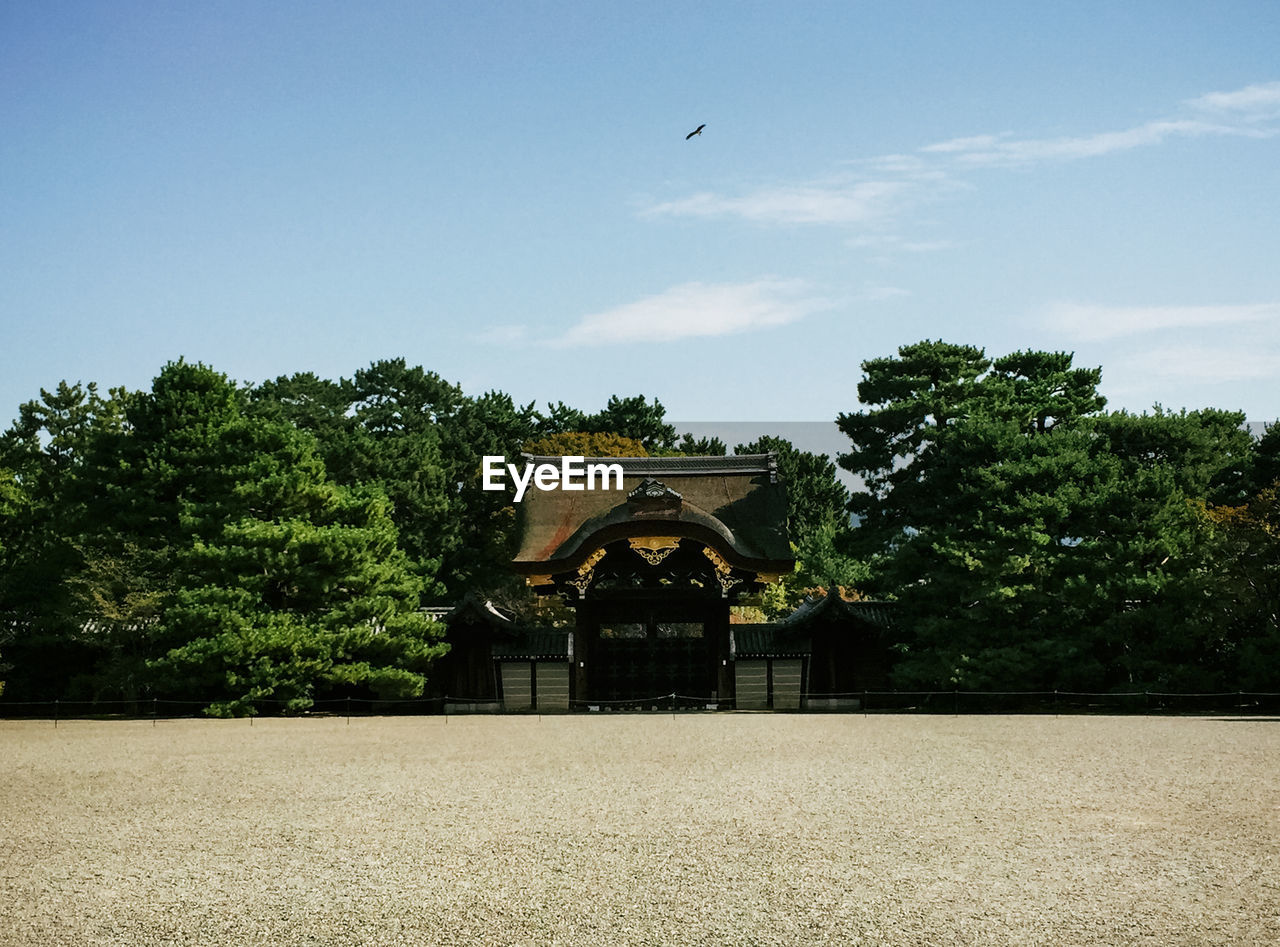 architecture, tree, no people, day, built structure, outdoors, sky, bird, building exterior, nature, flying