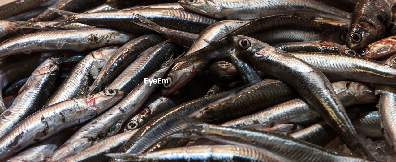 seafood, animal, fish, food and drink, vertebrate, food, full frame, freshness, raw food, no people, abundance, retail, wellbeing, healthy eating, large group of objects, market, backgrounds, high angle view, for sale, close-up, fish market, silver colored, fishing industry, consumerism