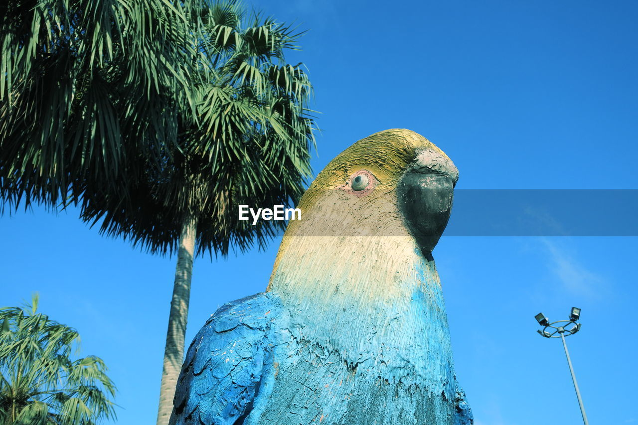 bird, low angle view, animals in the wild, blue, animal wildlife, animal themes, day, tree, one animal, green color, no people, outdoors, nature, perching, clear sky, sky, tree trunk, parrot, beauty in nature, close-up, bird of prey