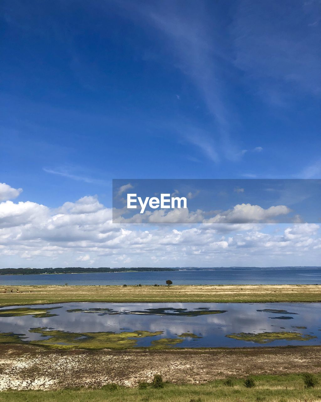 water, sky, cloud - sky, tranquil scene, scenics - nature, beauty in nature, tranquility, land, grass, beach, nature, day, sea, non-urban scene, horizon, blue, no people, plant, horizon over water, outdoors